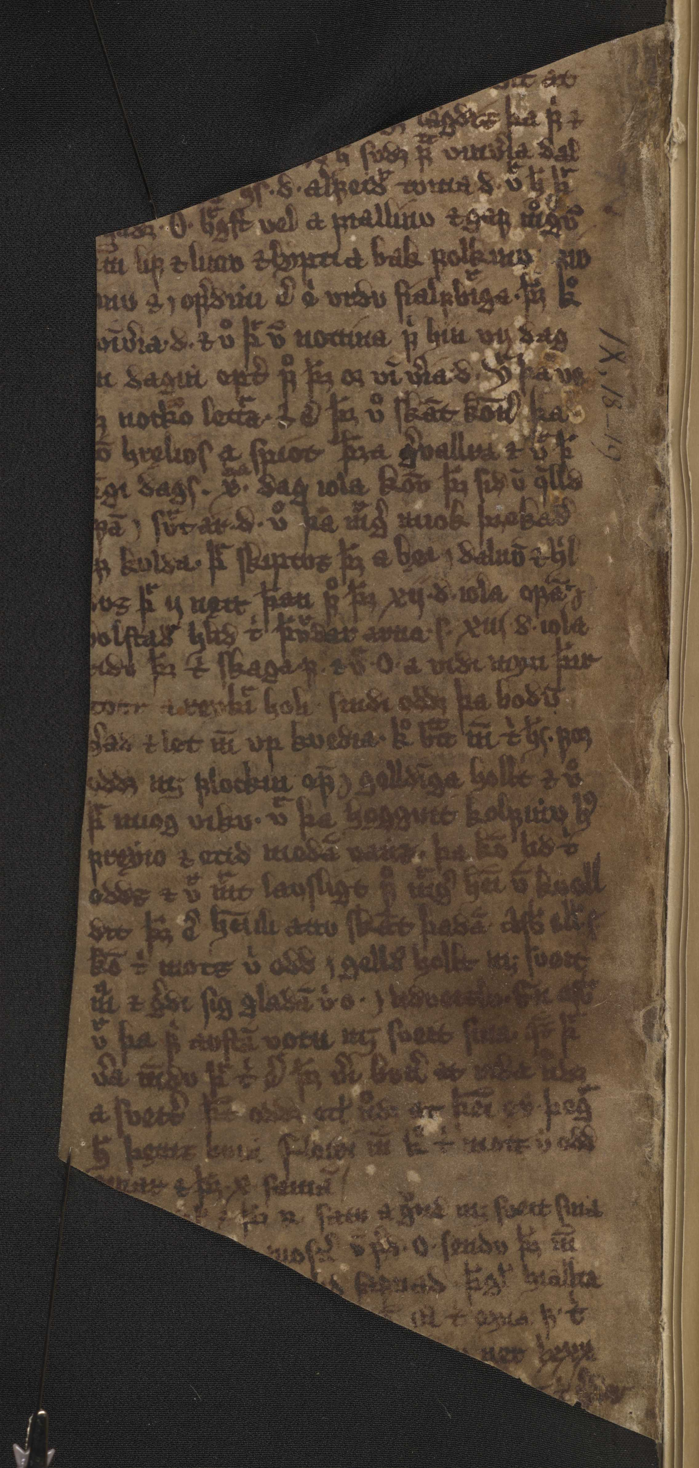AM 122 b fol - 23v