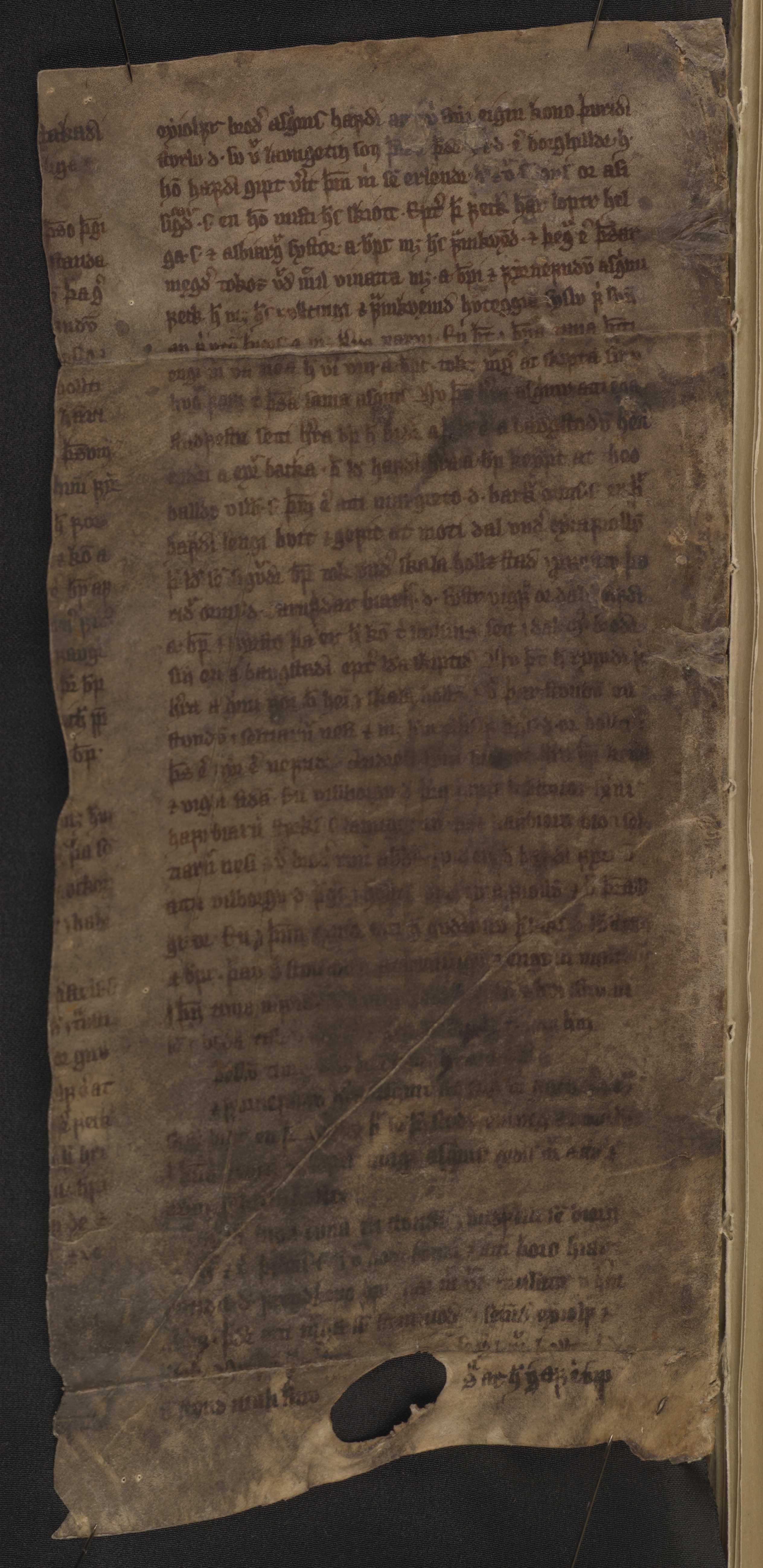 AM 122 b fol - 26v