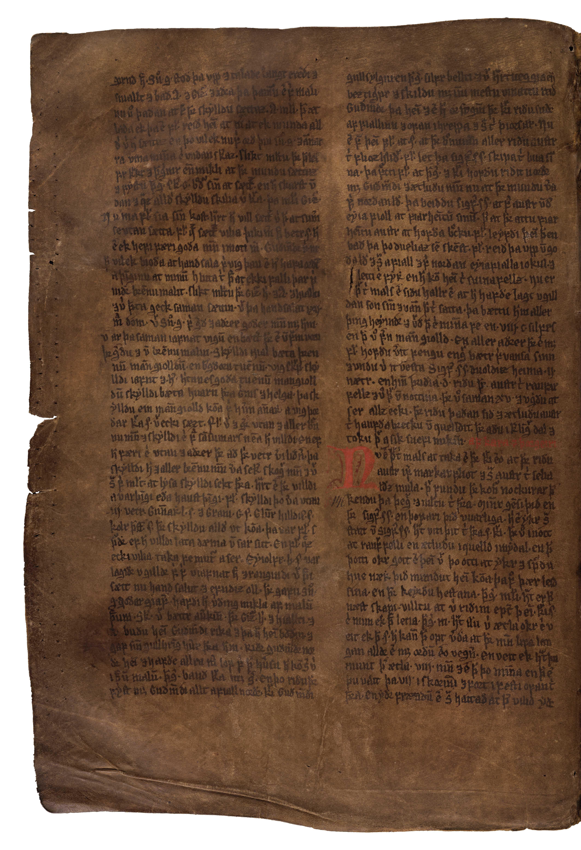 AM 132 fol - 55v