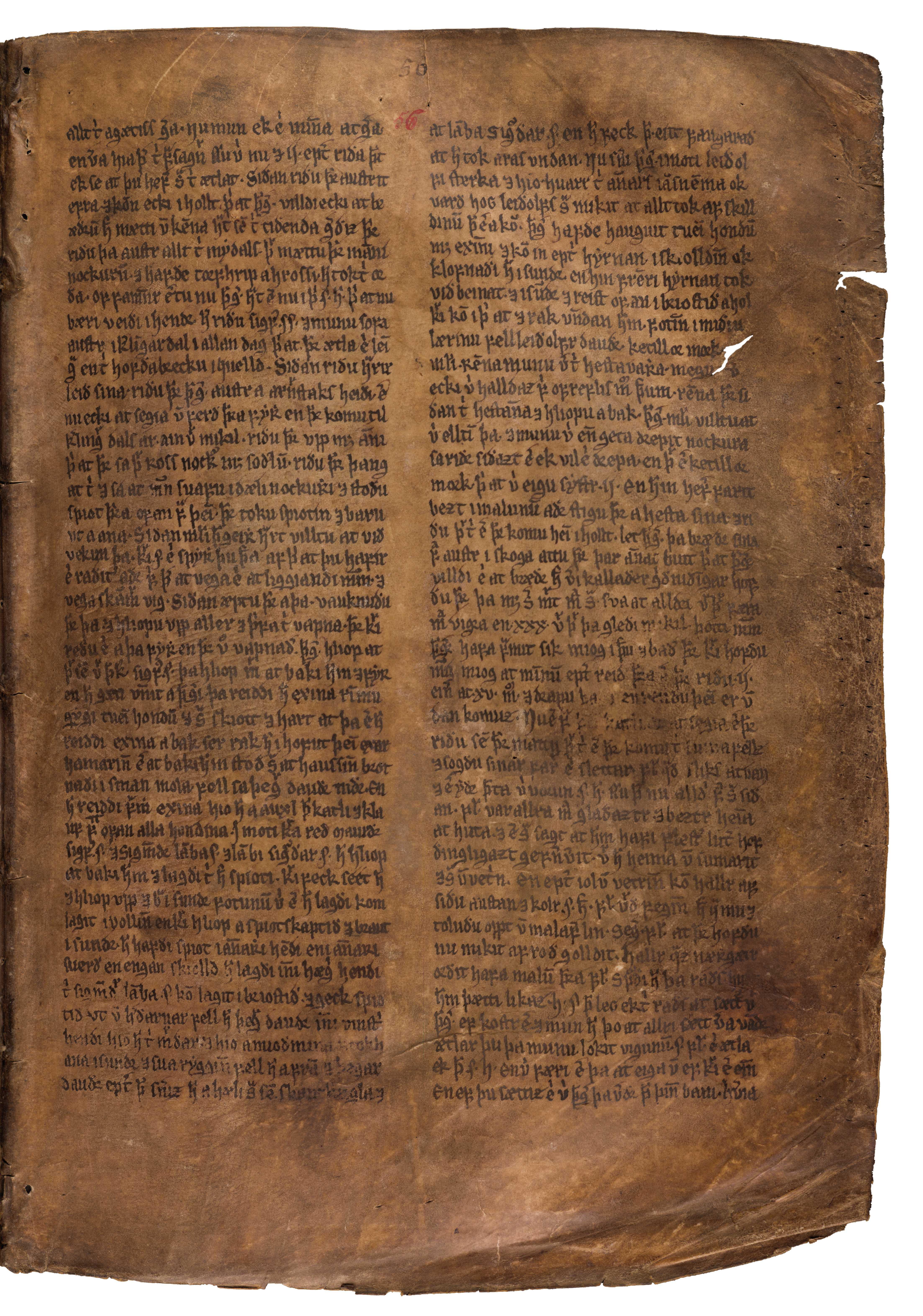 AM 132 fol - 56r