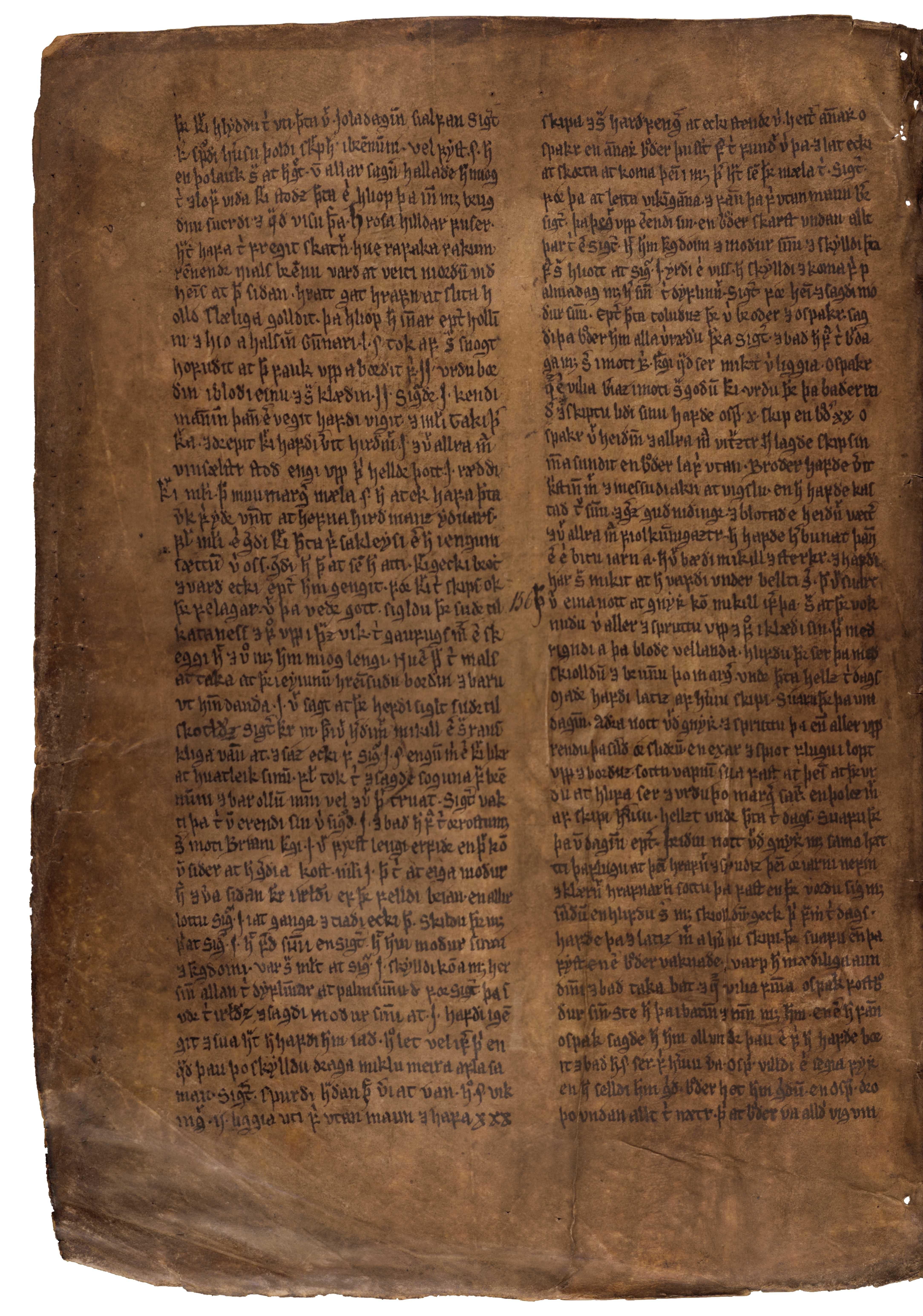 AM 132 fol - 59v