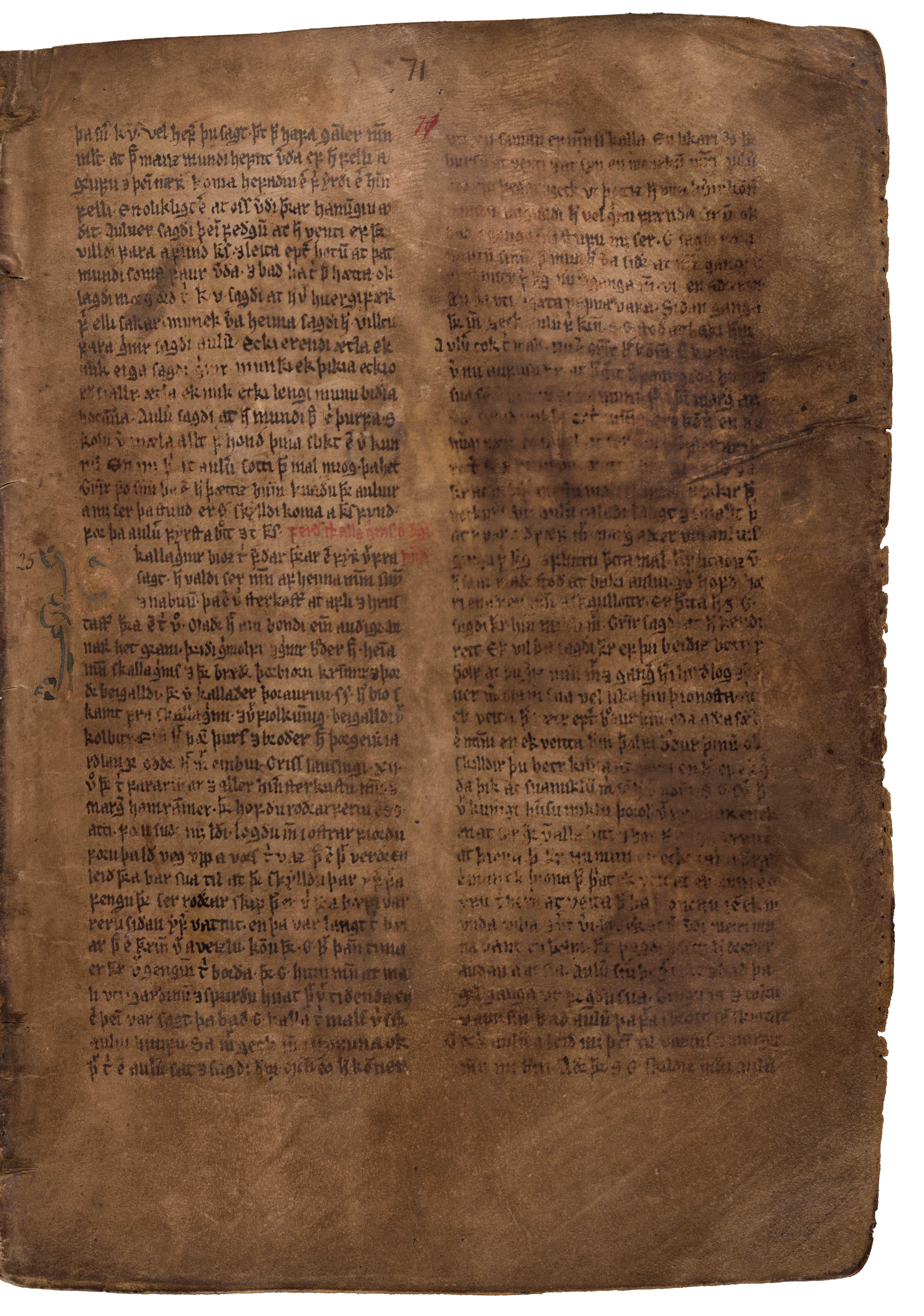 AM 132 fol - 71r