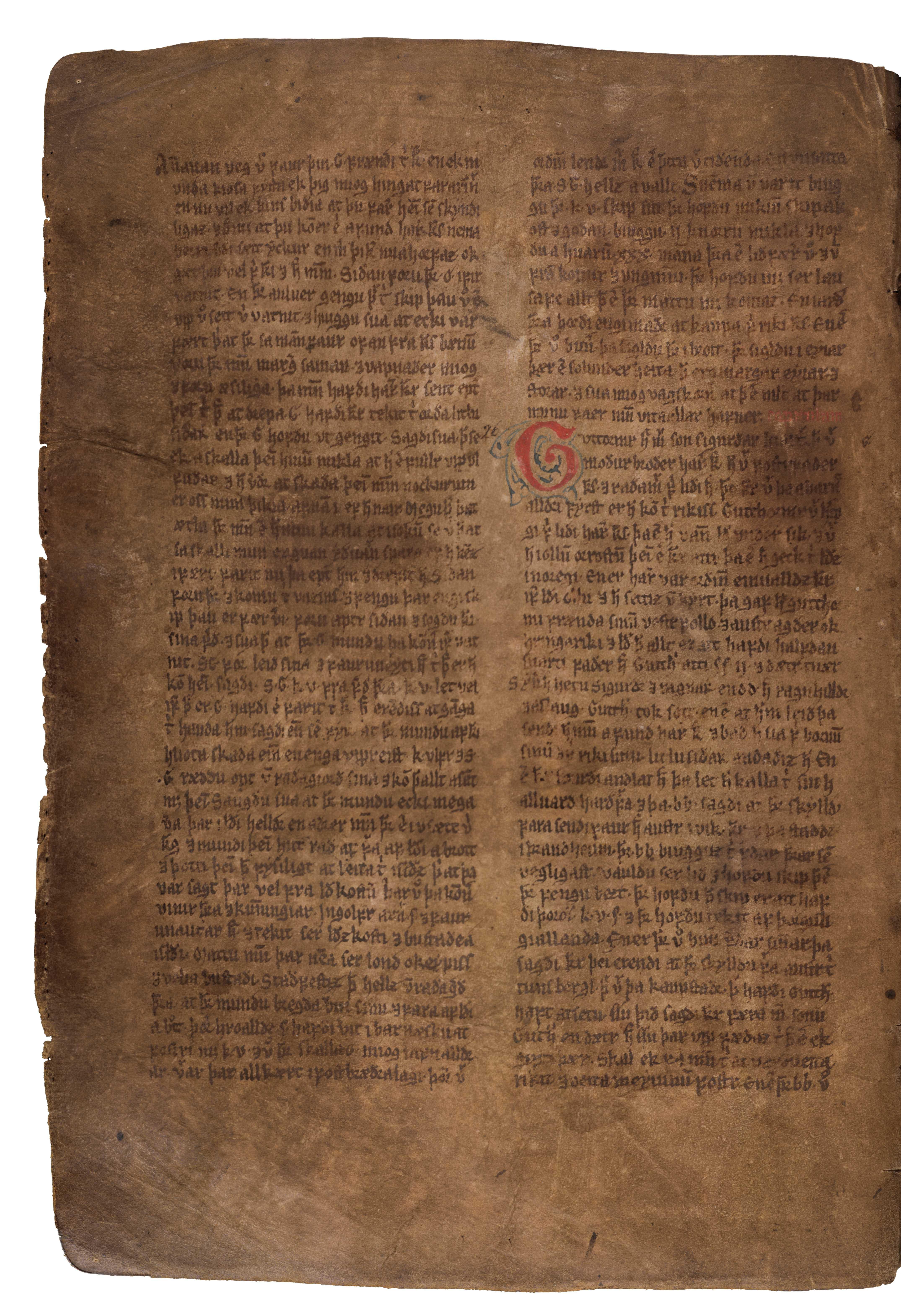 AM 132 fol - 71v