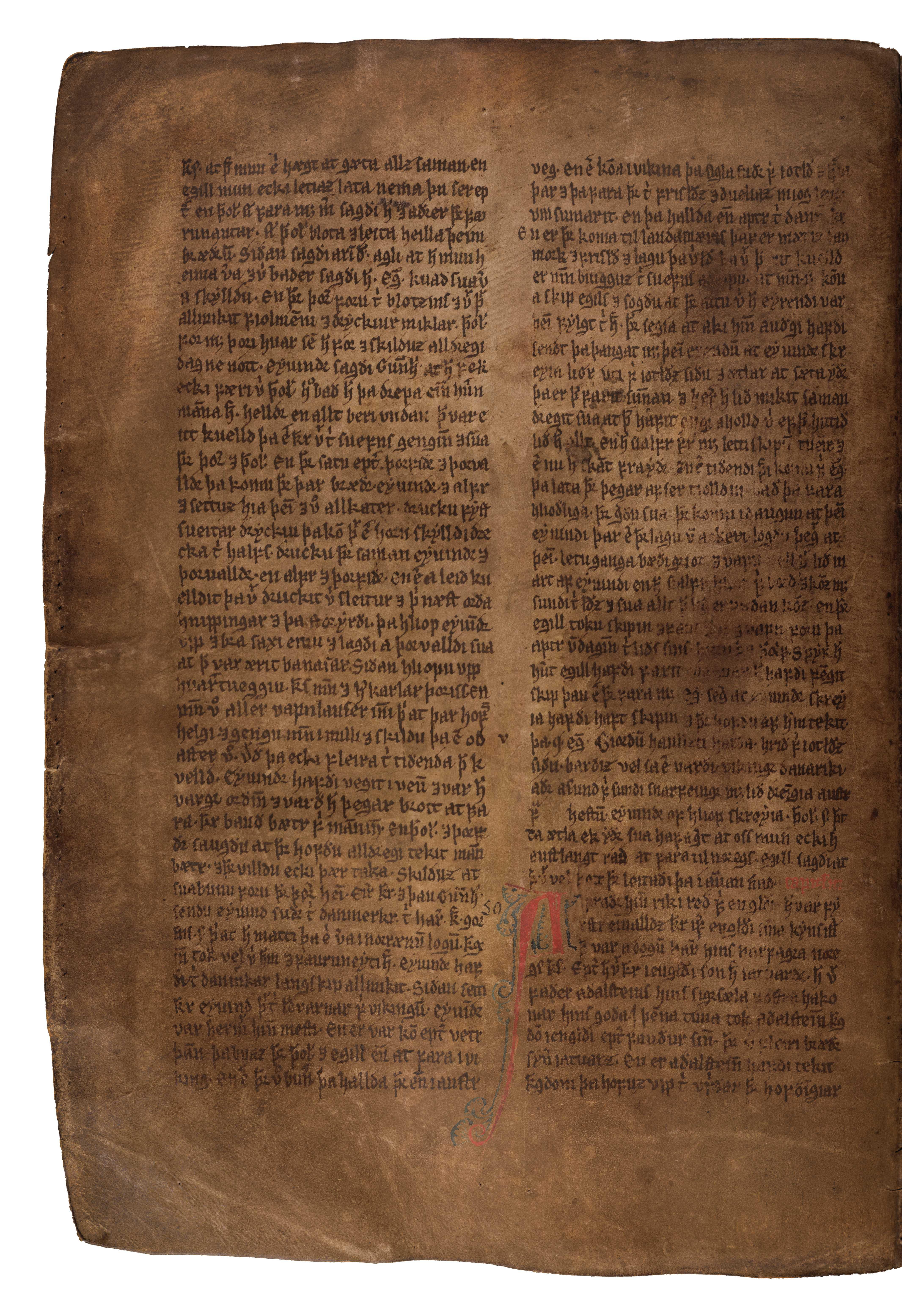 AM 132 fol - 79v