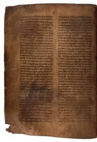 AM 132 fol, 82v (d464dpi)