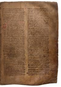 AM 132 fol, 83r (d489dpi)