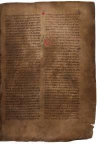 AM 132 fol, 89r (d479dpi)