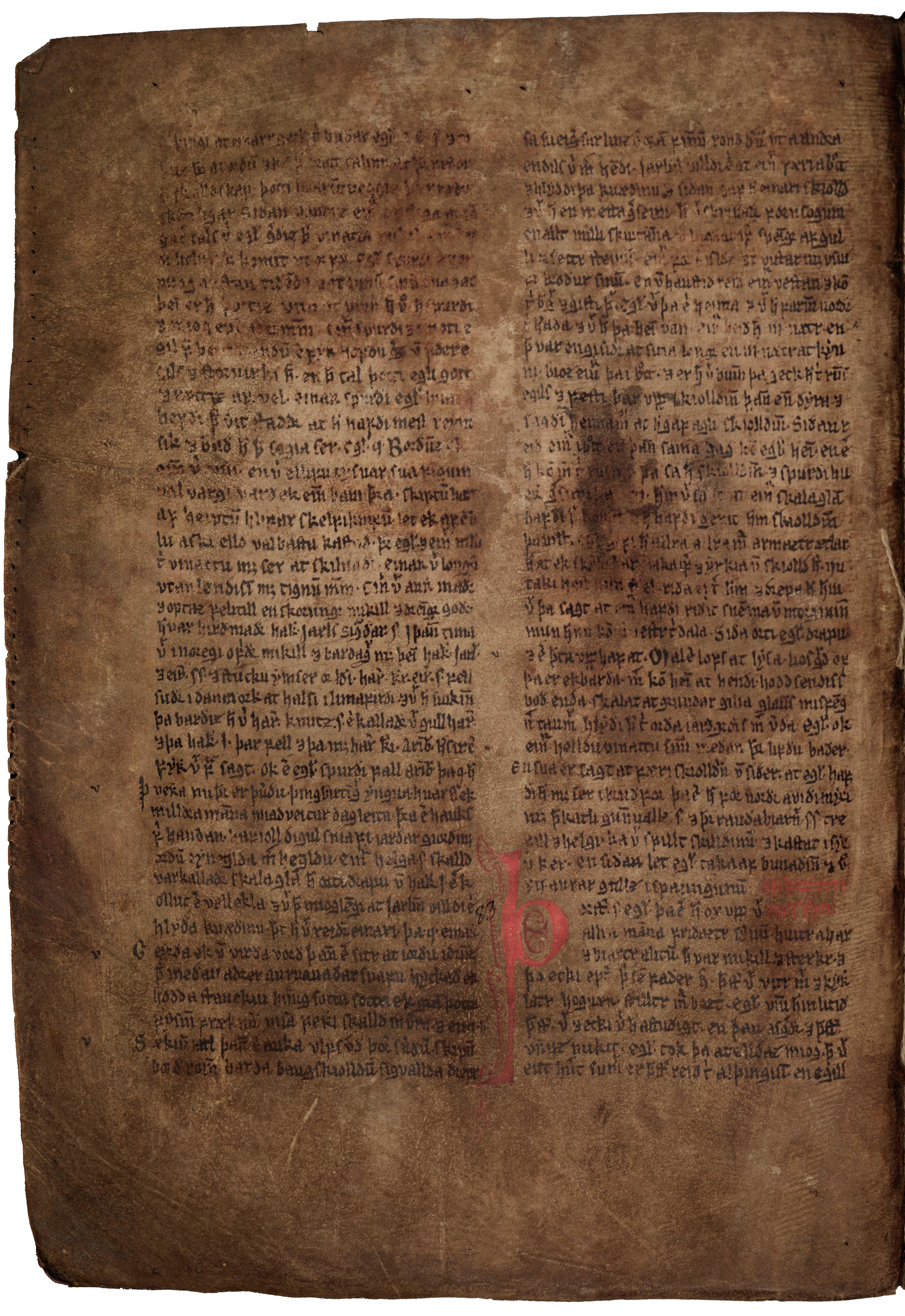 AM 132 fol - 95v