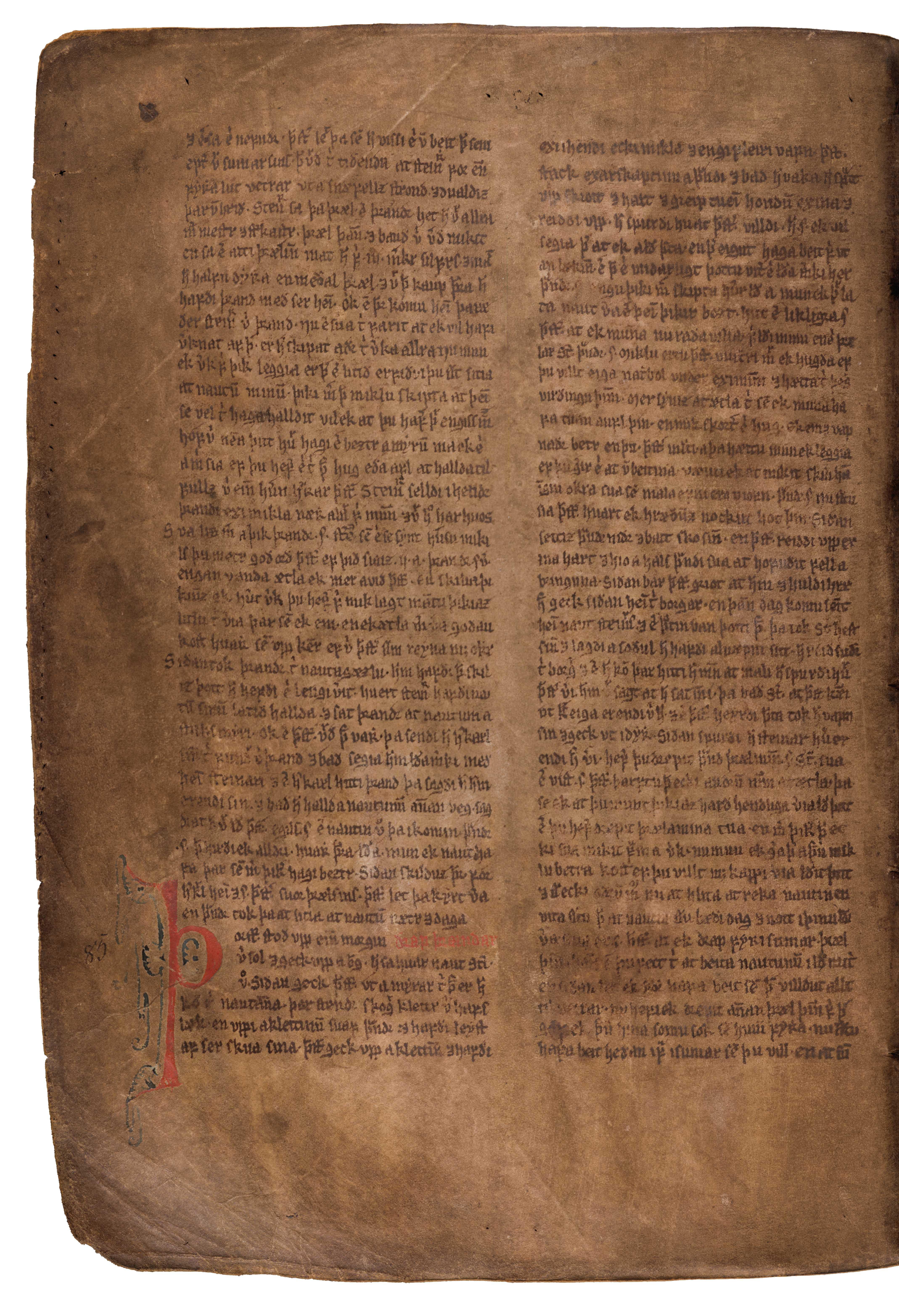 AM 132 fol - 96v