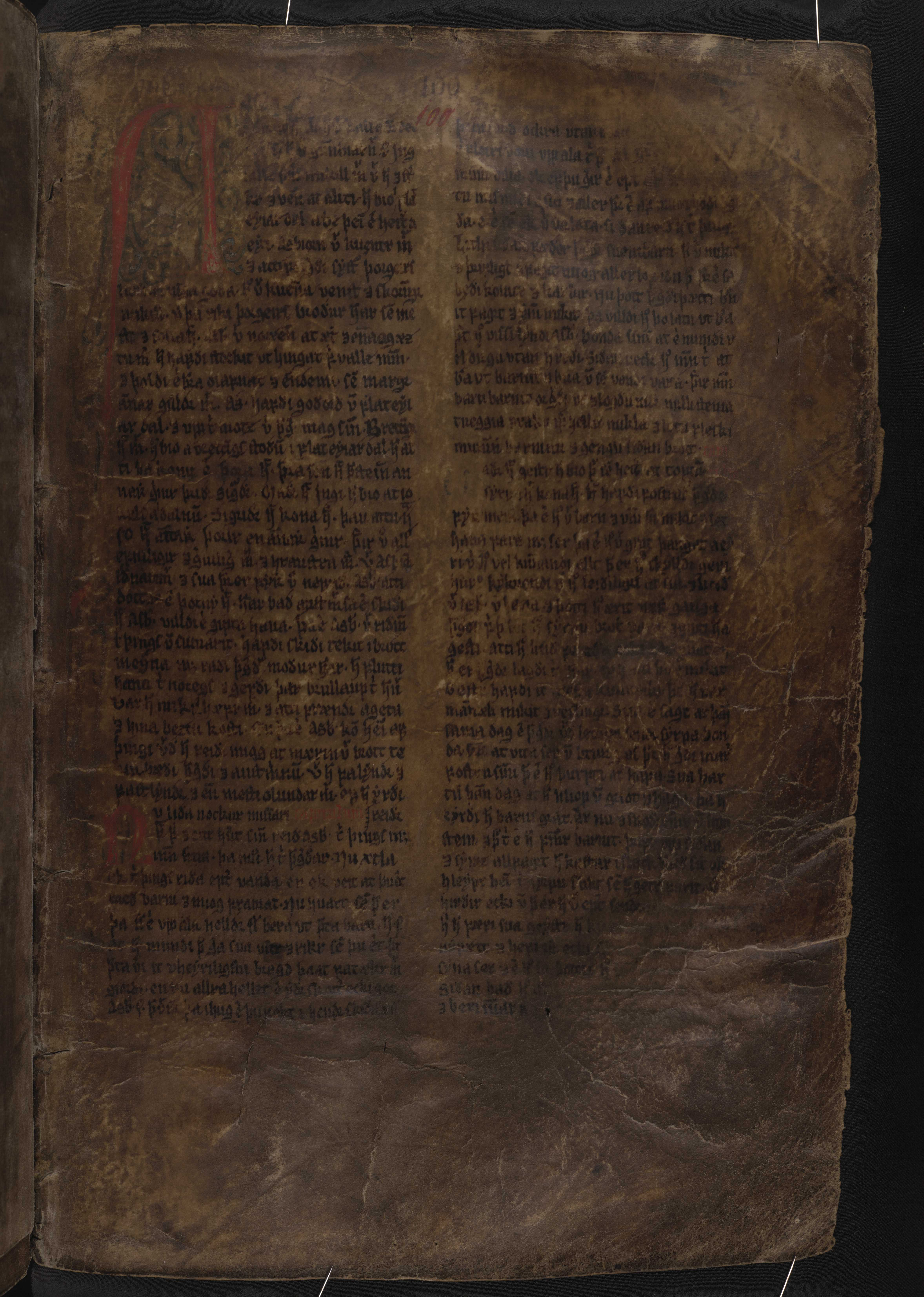 AM 132 fol - 100r
