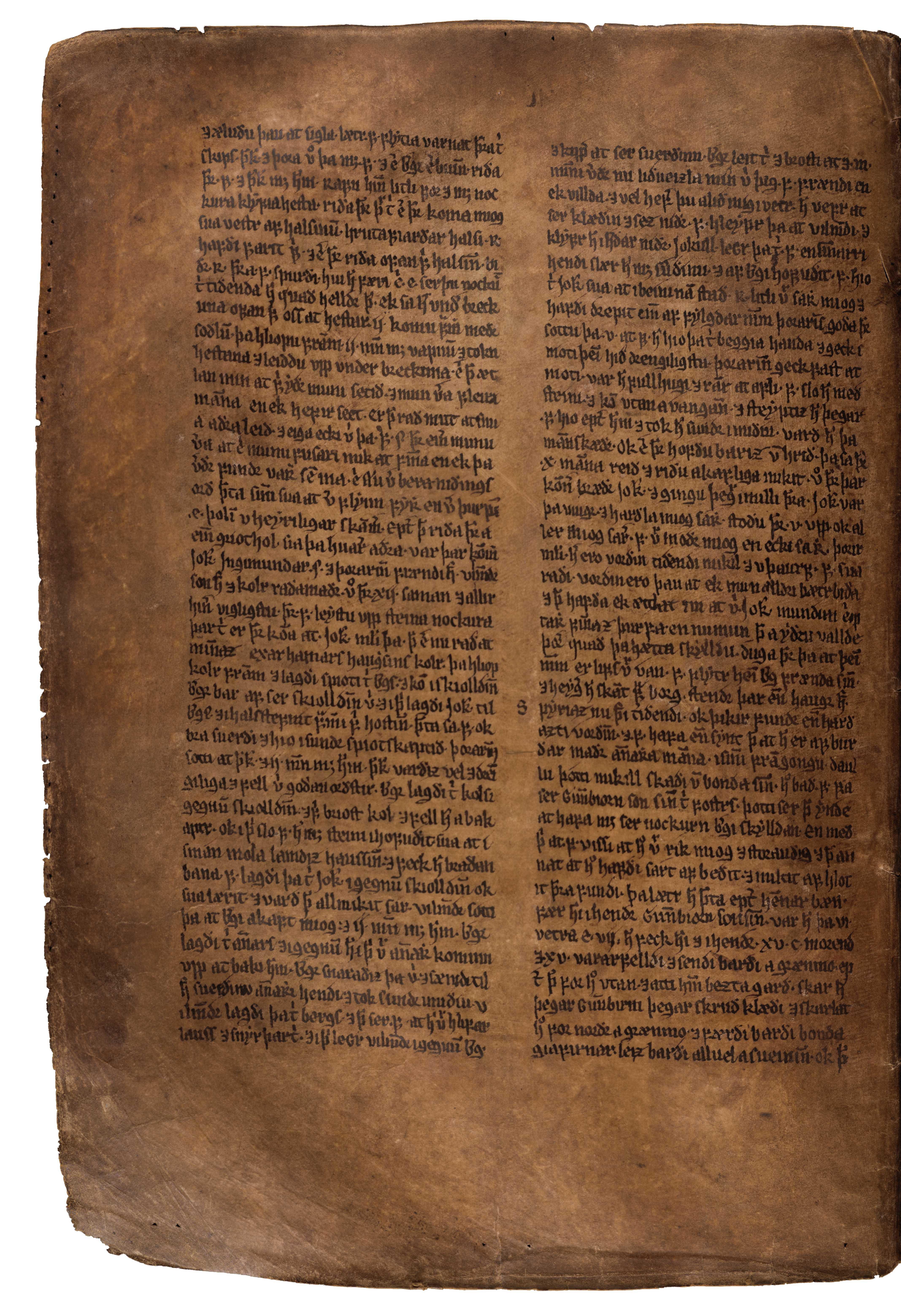 AM 132 fol - 109v