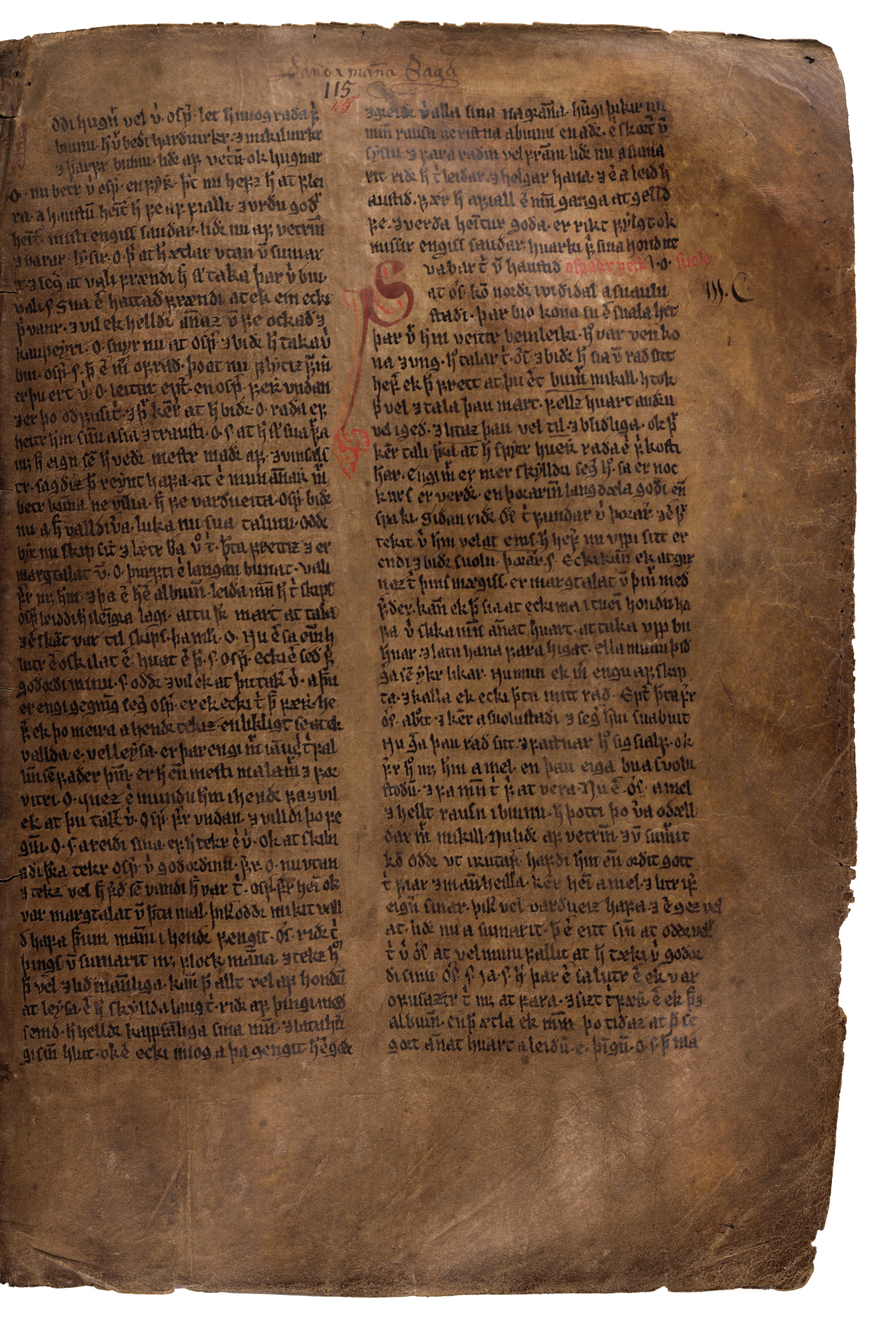 AM 132 fol - 115r