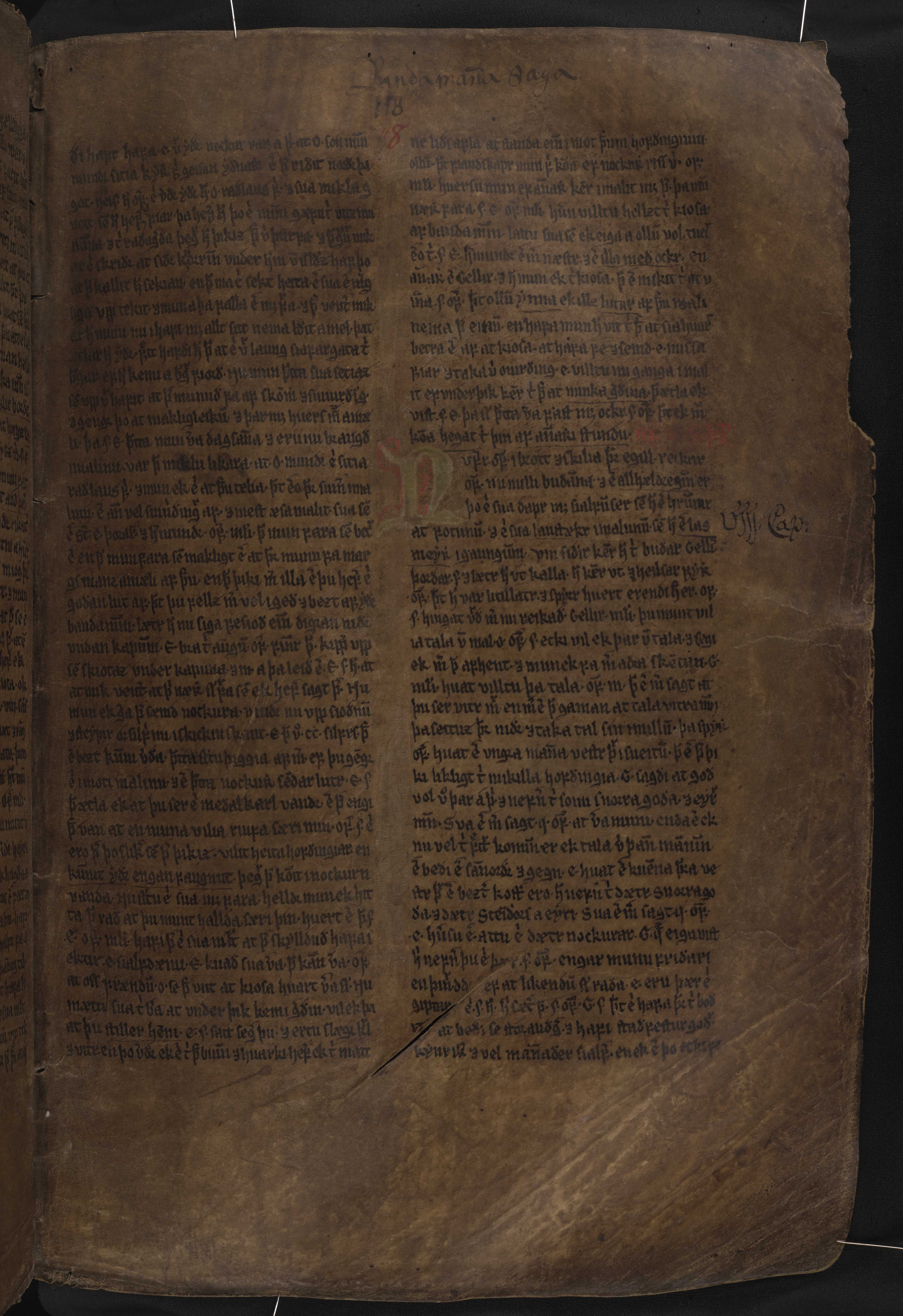 AM 132 fol - 118r