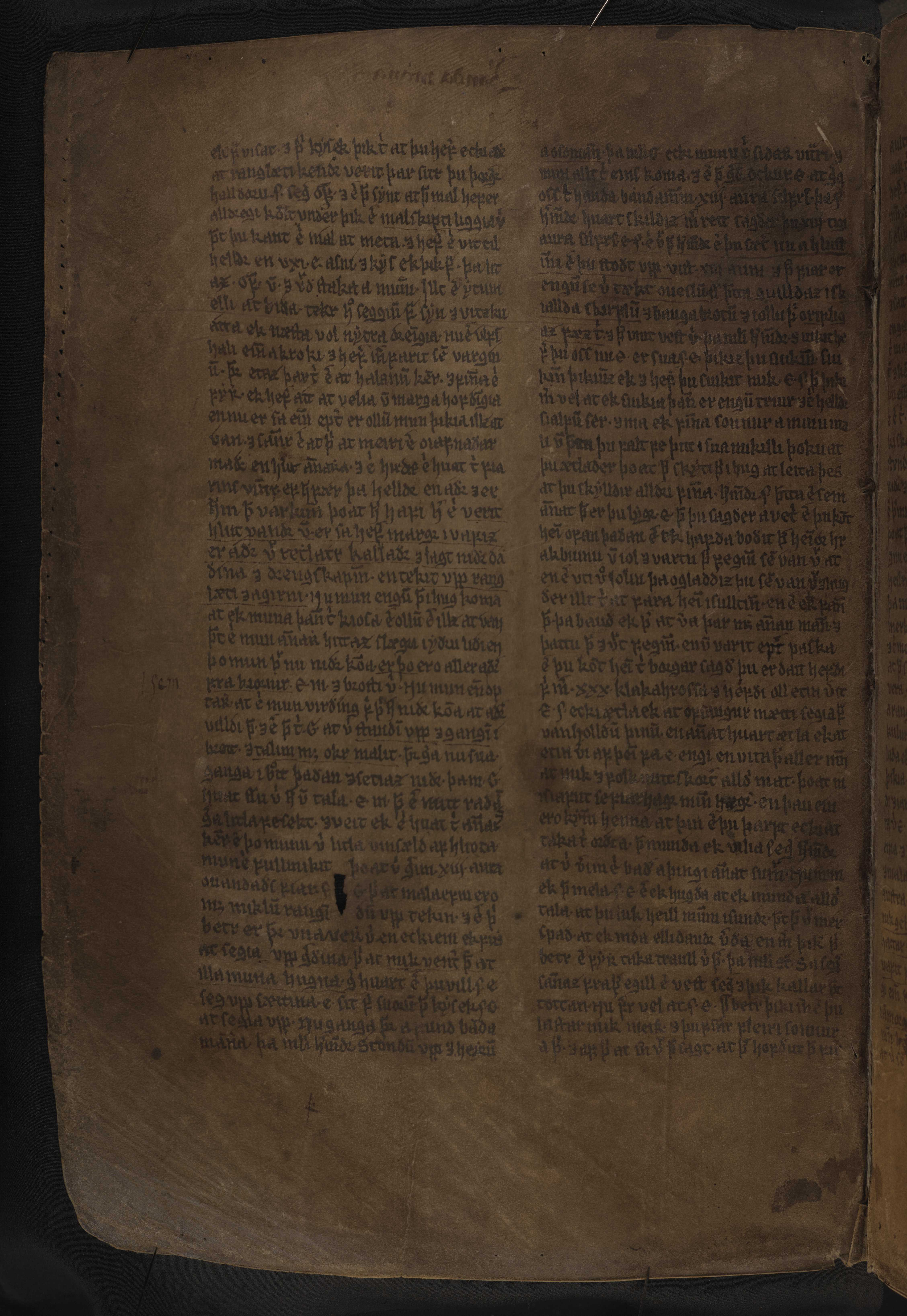 AM 132 fol - 119v