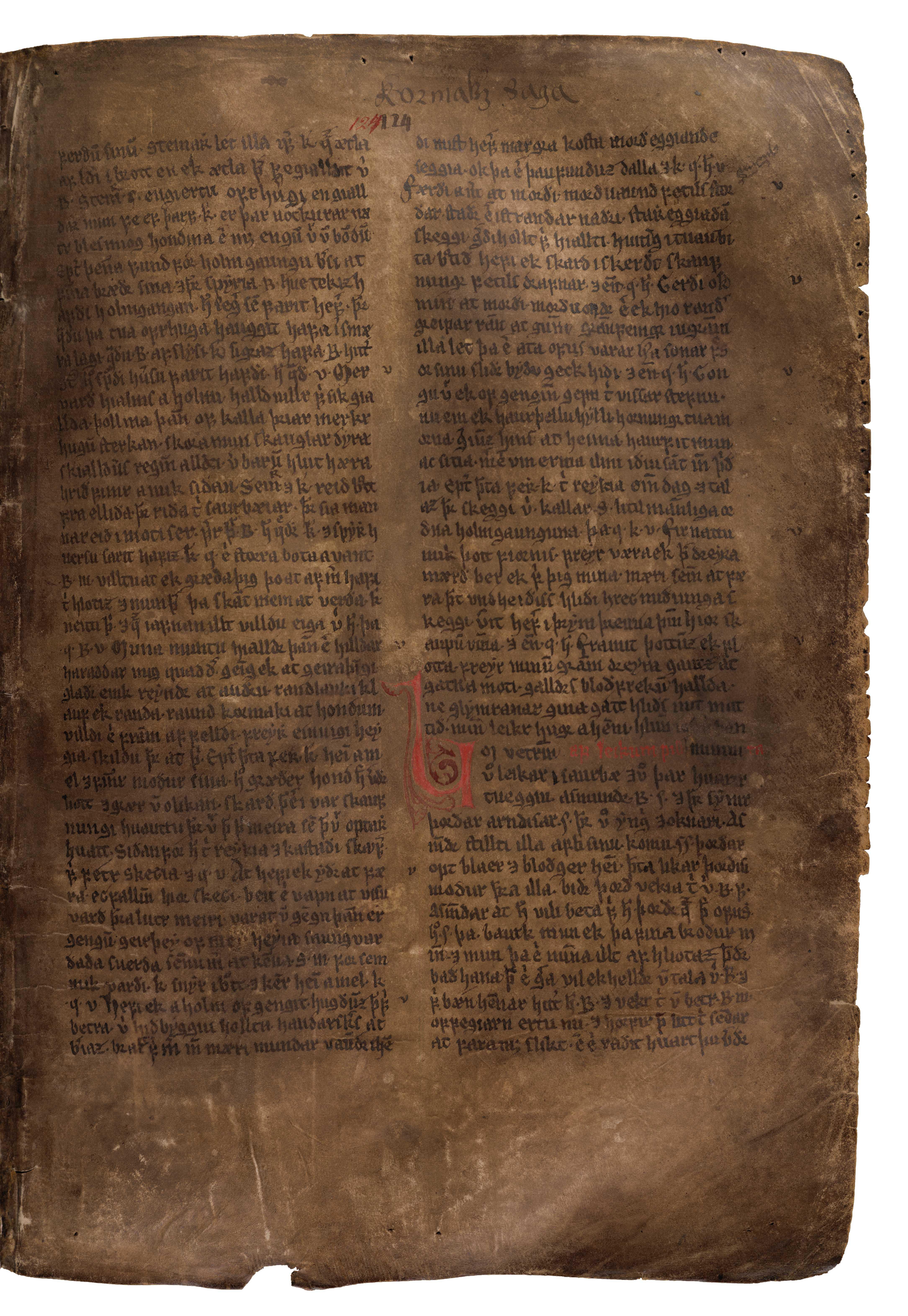 AM 132 fol - 124r
