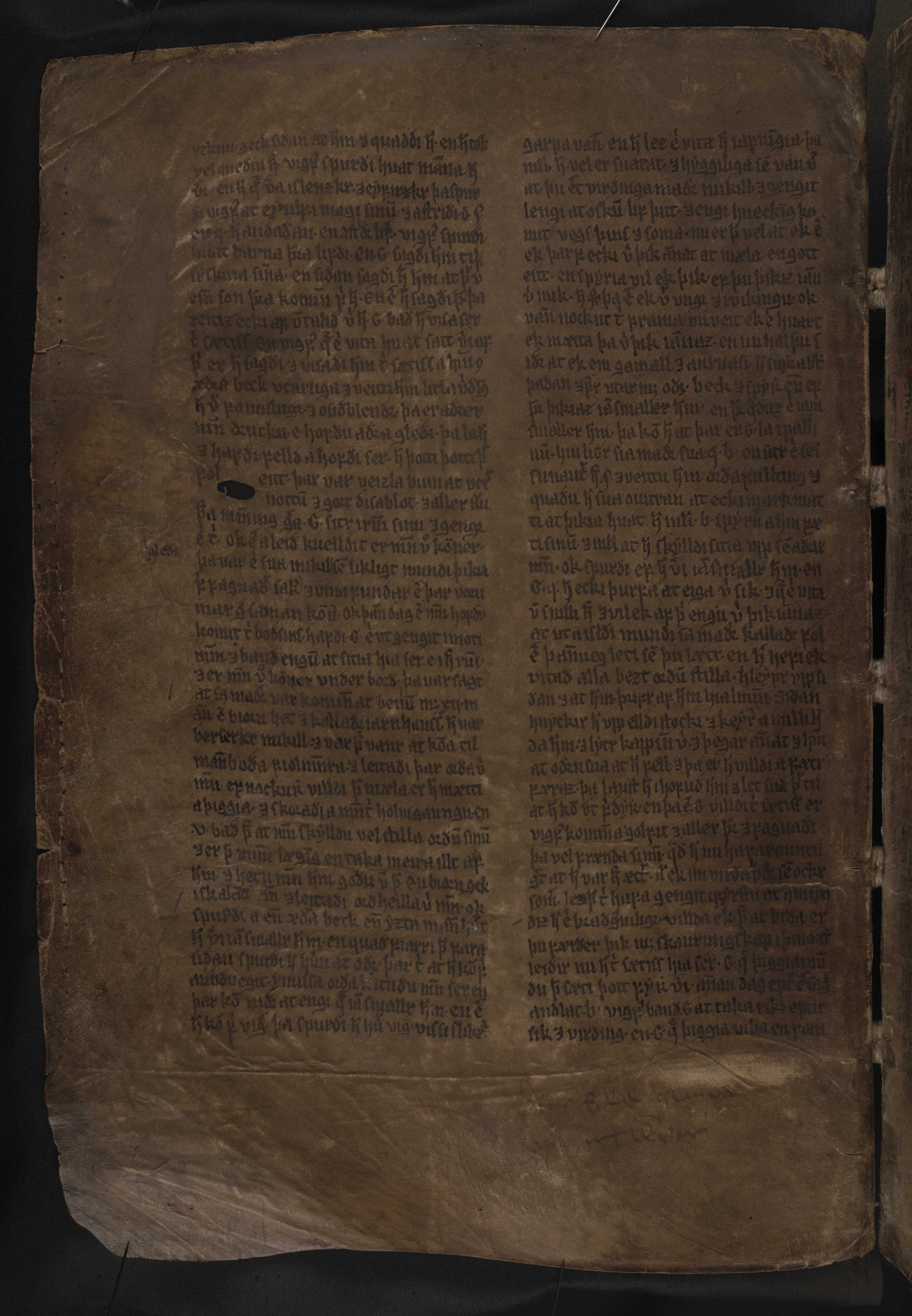 AM 132 fol - 131v