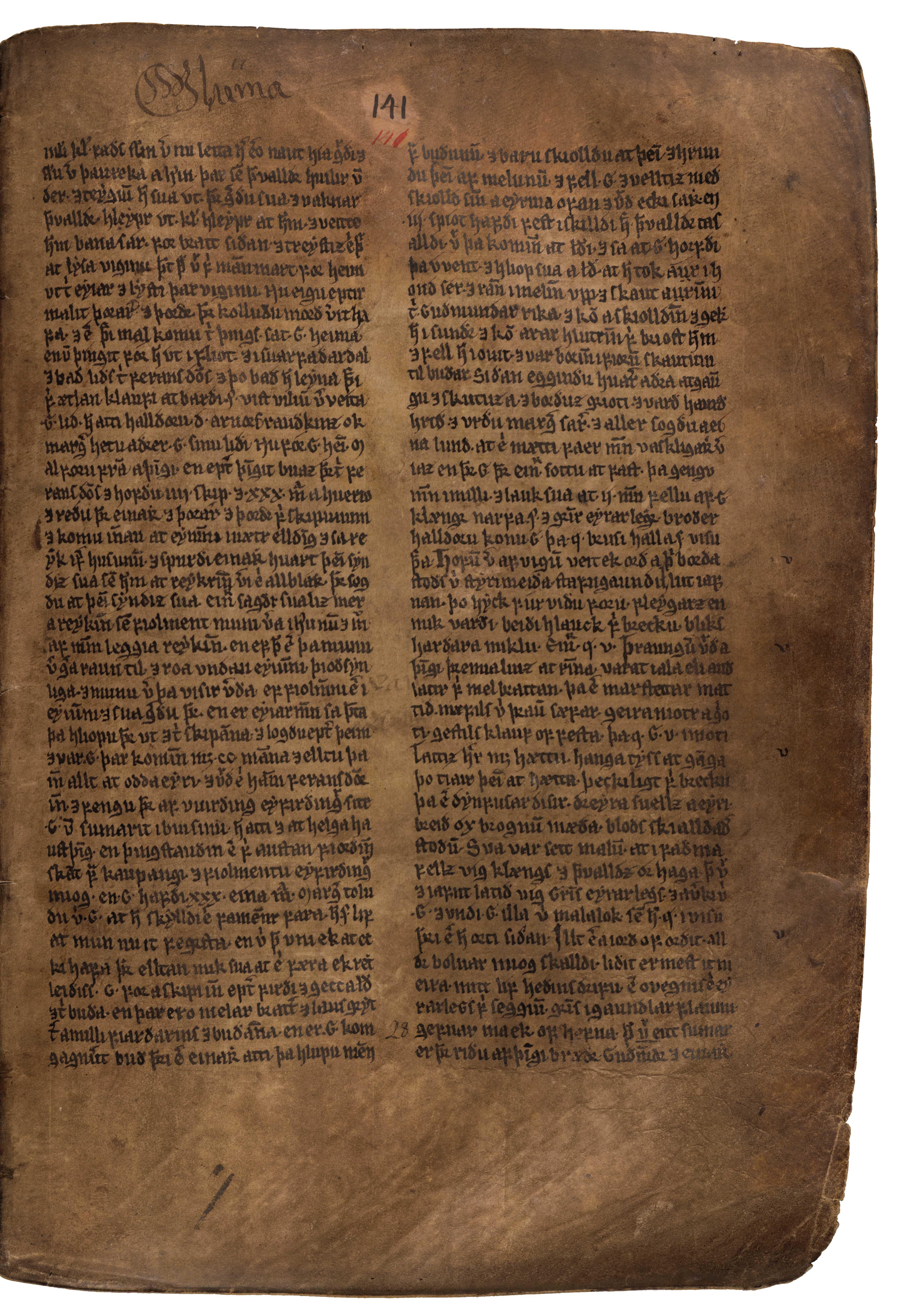 AM 132 fol - 141r