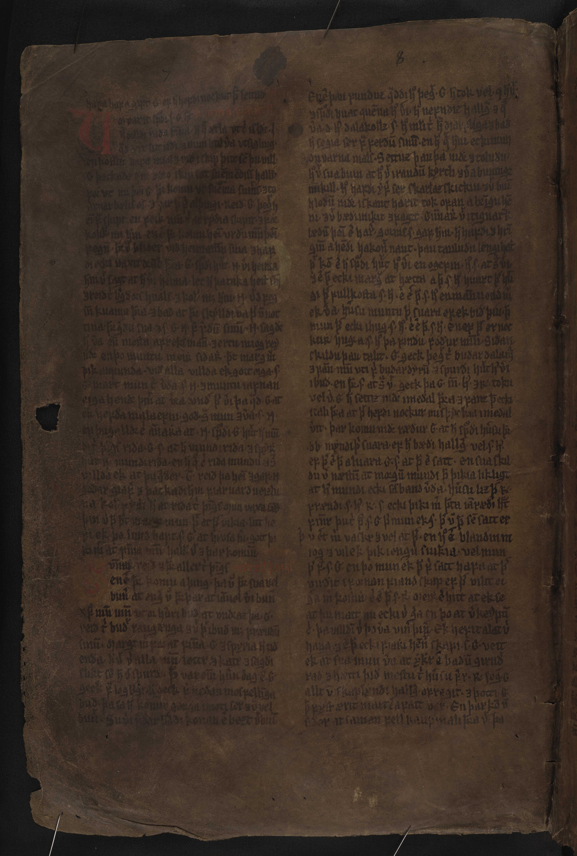 AM 132 fol - 12v