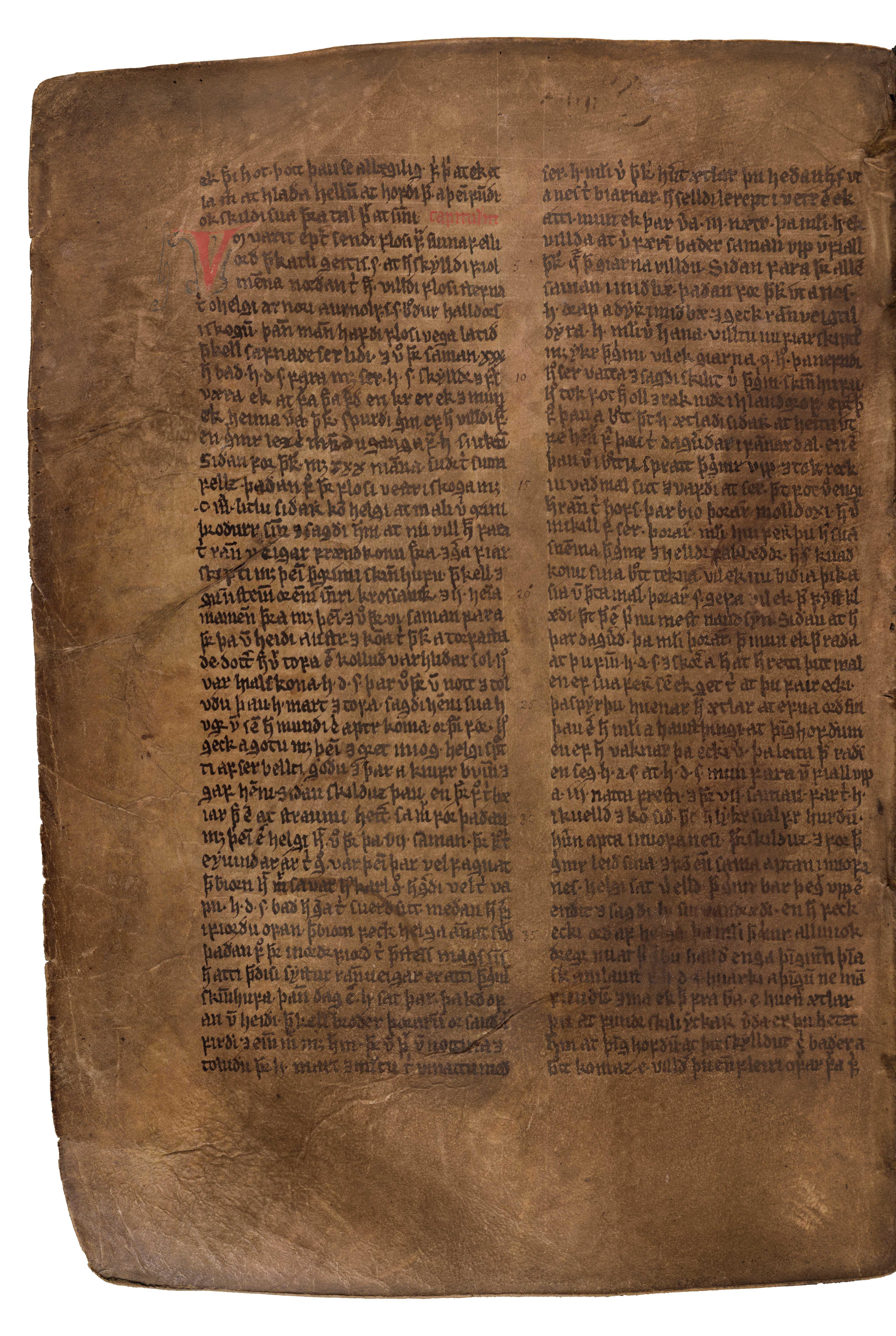 AM 132 fol - 144v