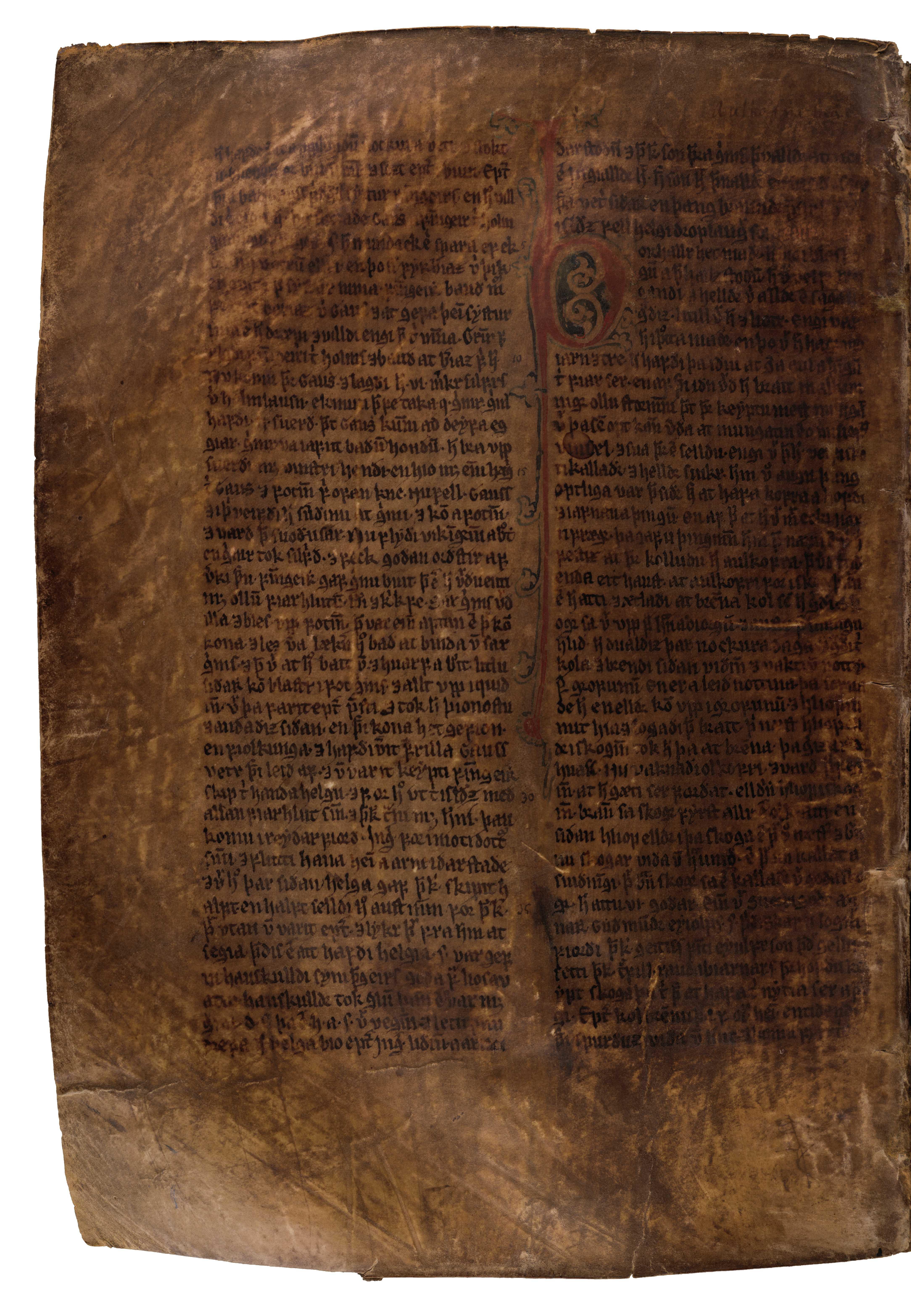 AM 132 fol - 147v