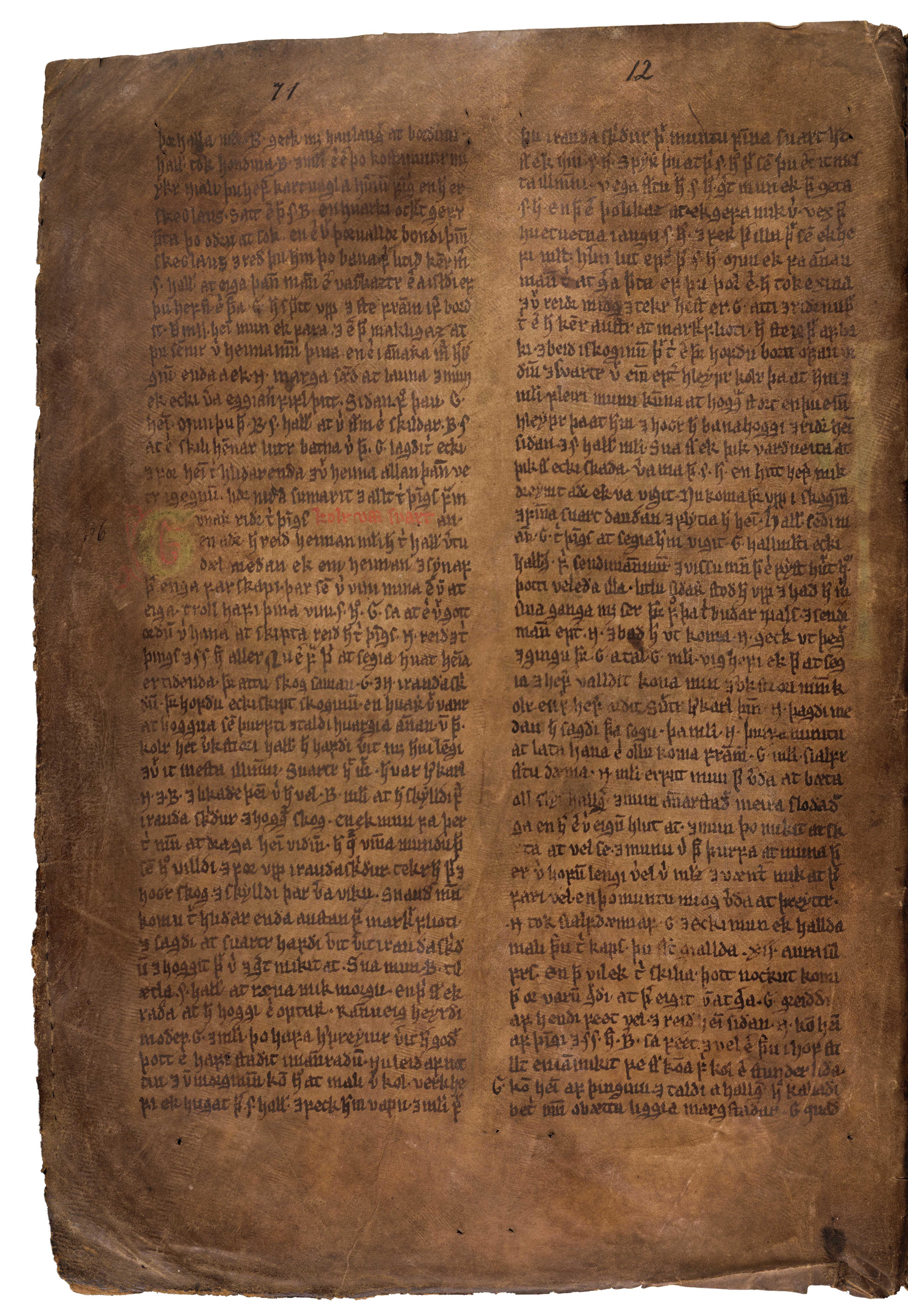 AM 132 fol - 13v