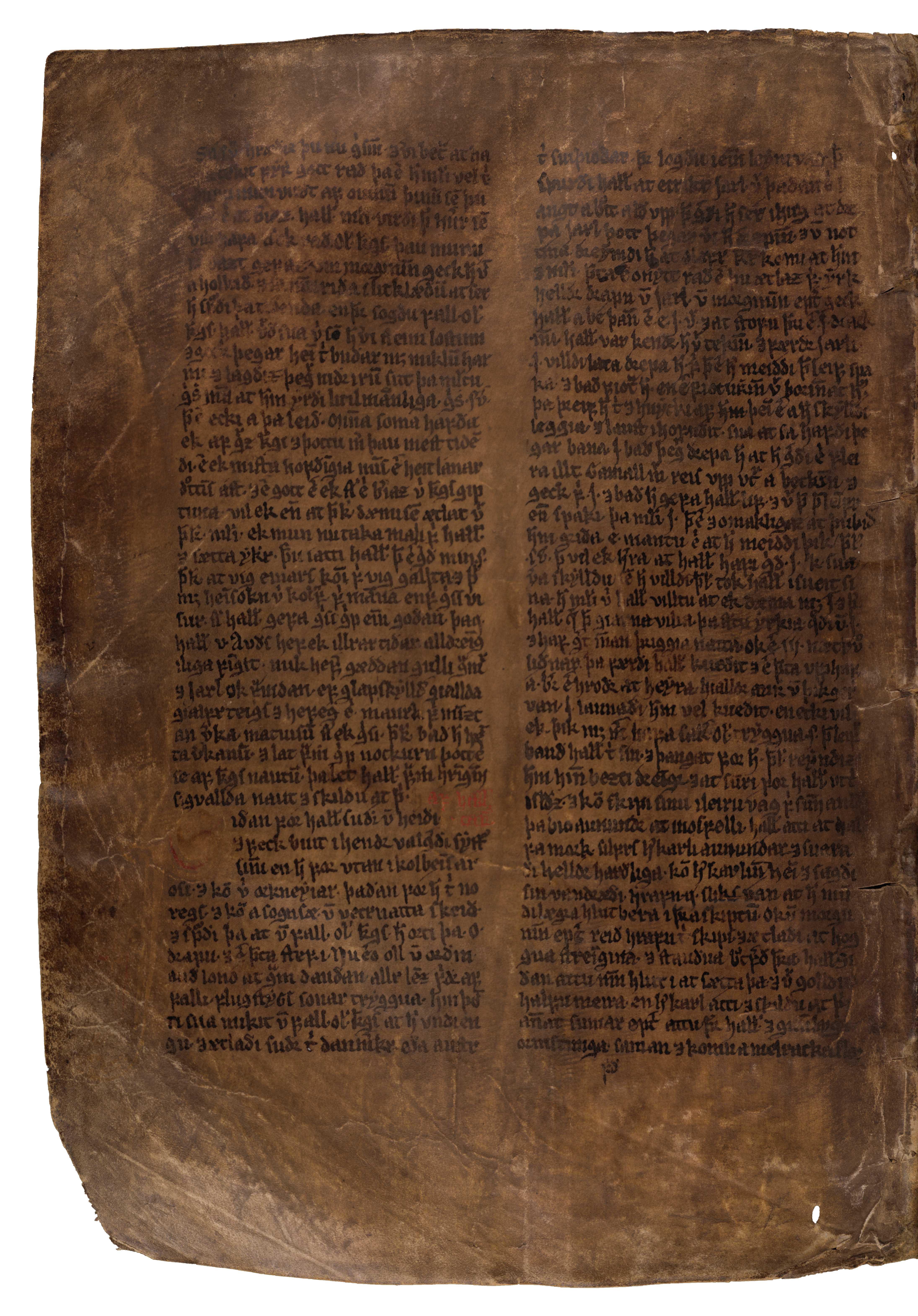 AM 132 fol - 155v