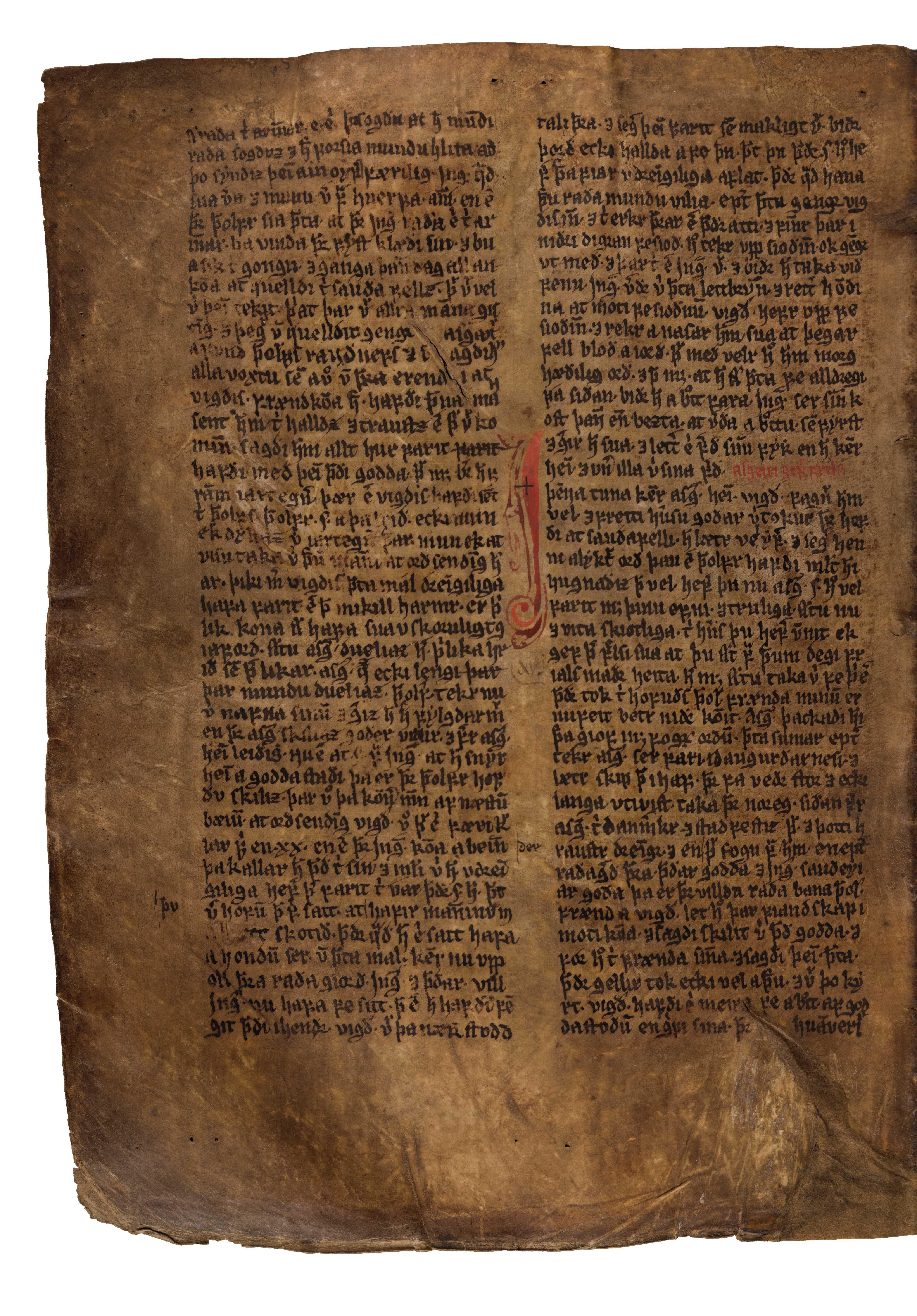 AM 132 fol - 161v