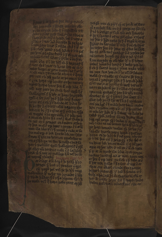 AM 132 fol - 166v