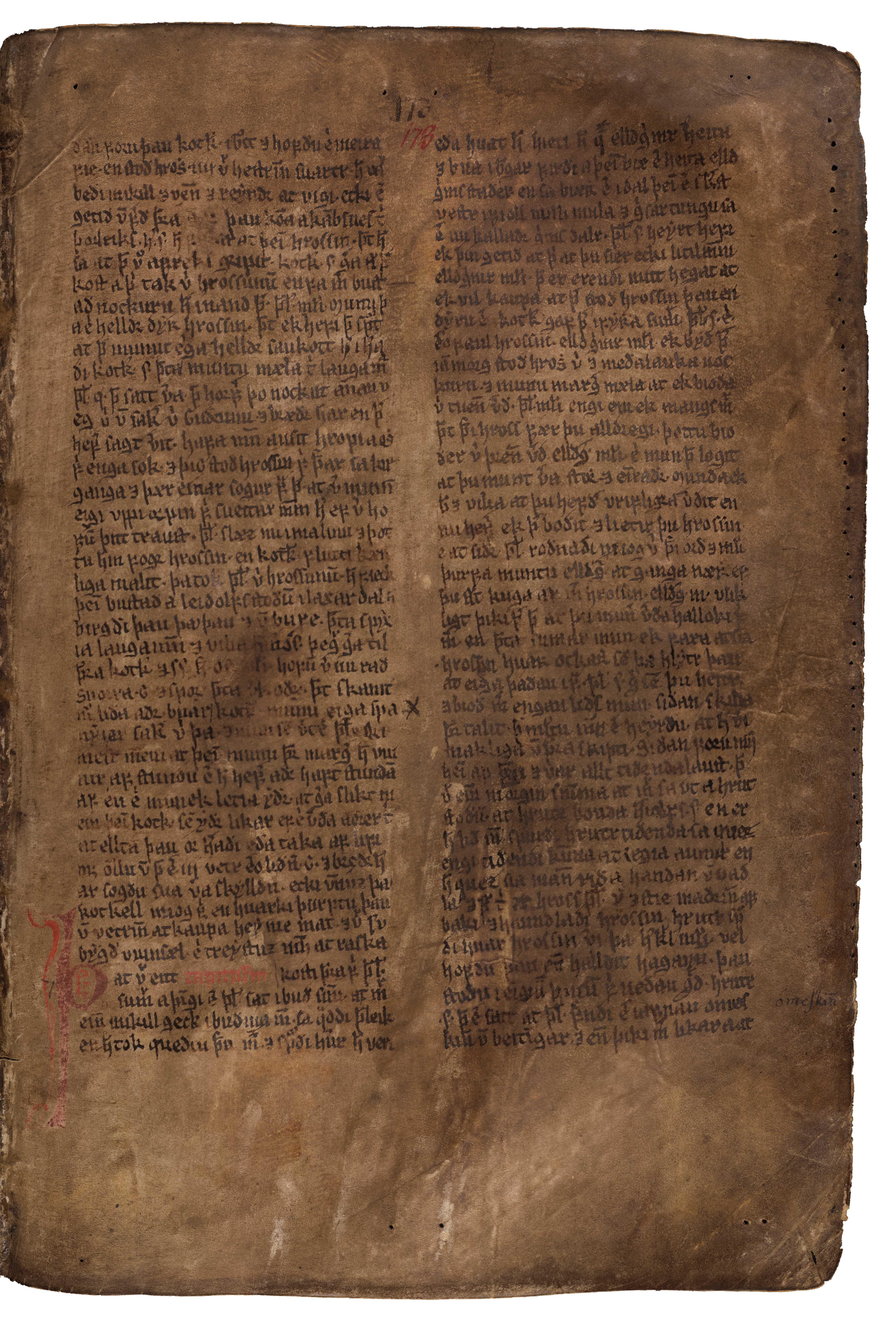 AM 132 fol - 173r