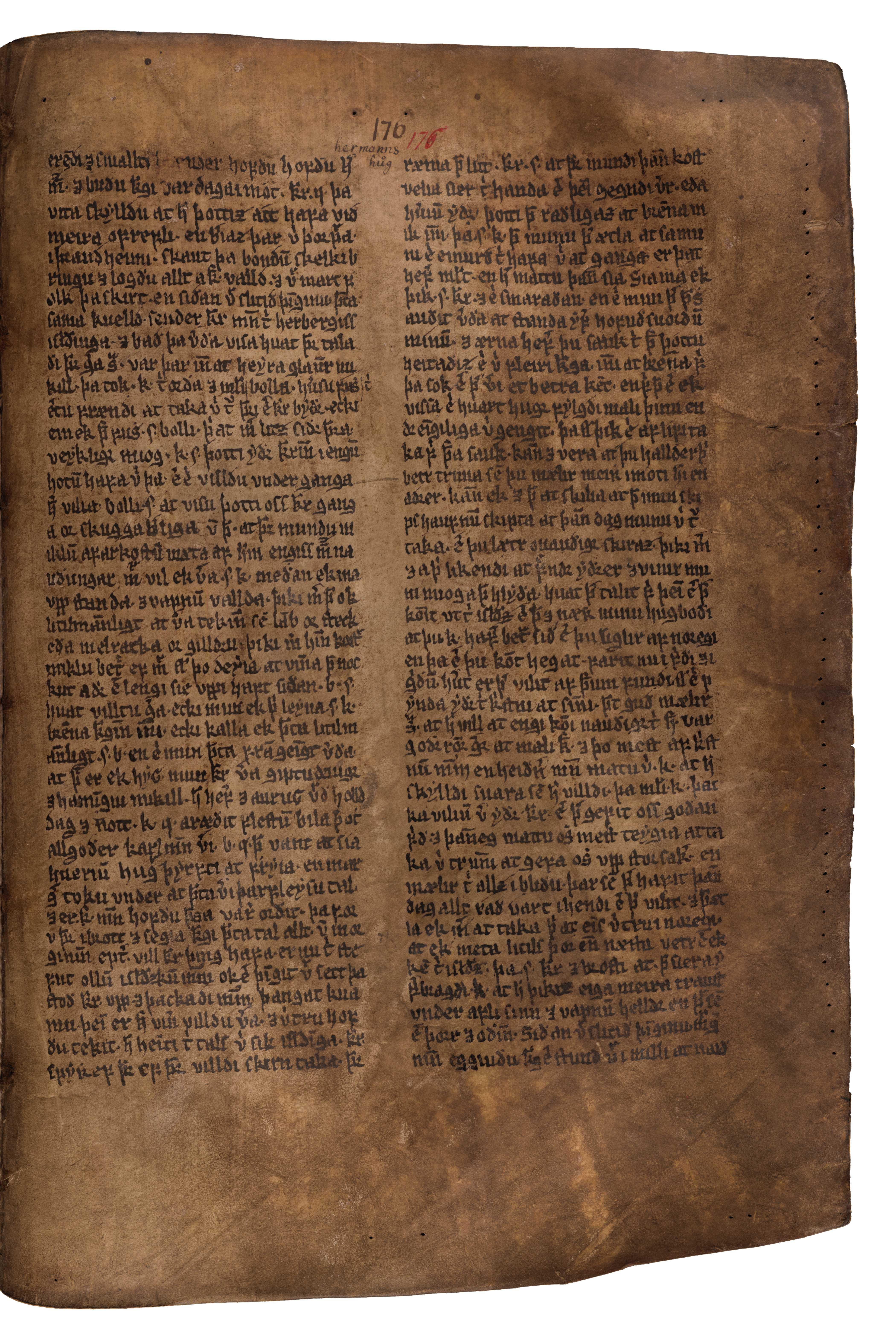 AM 132 fol - 176r