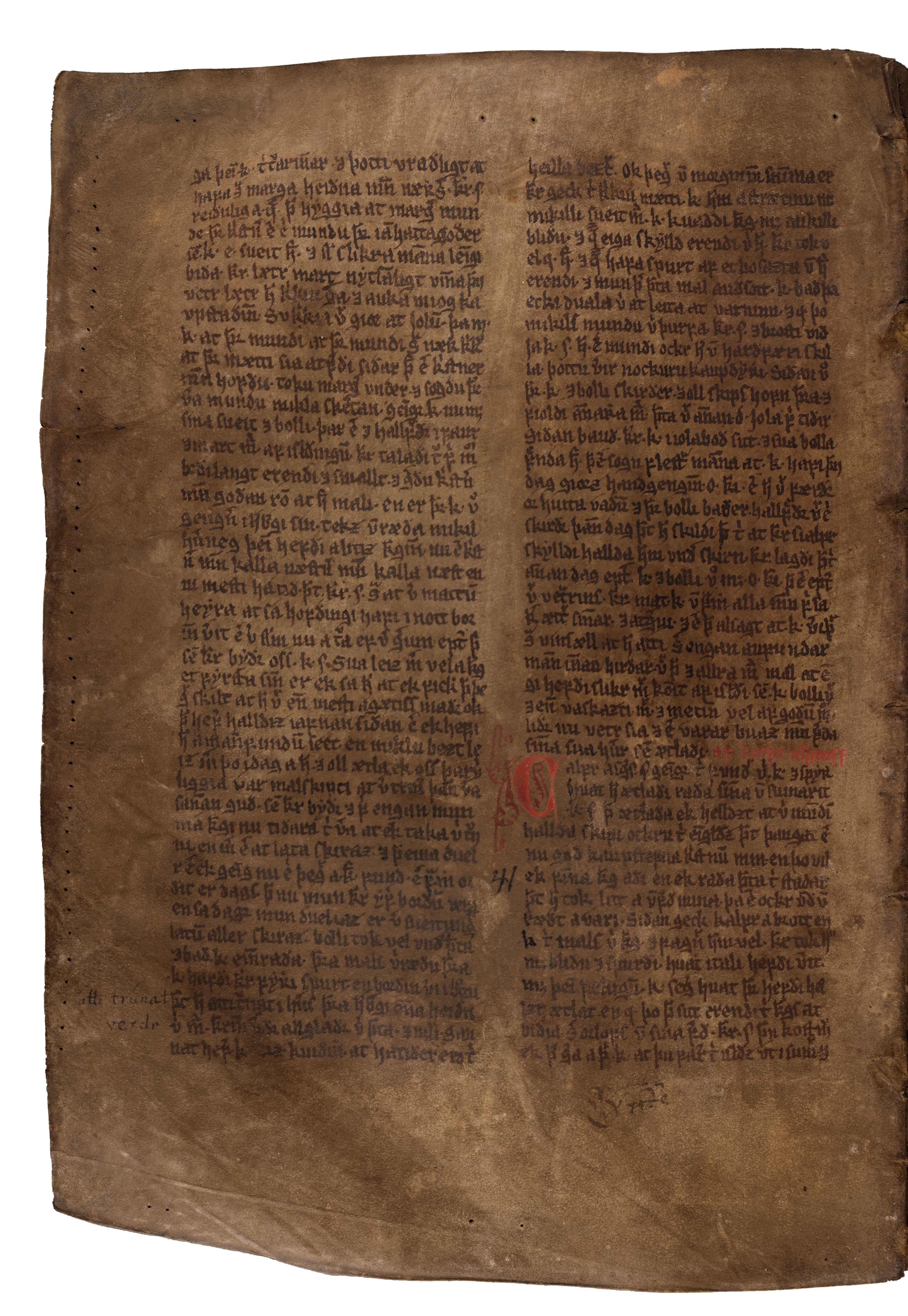 AM 132 fol - 176v