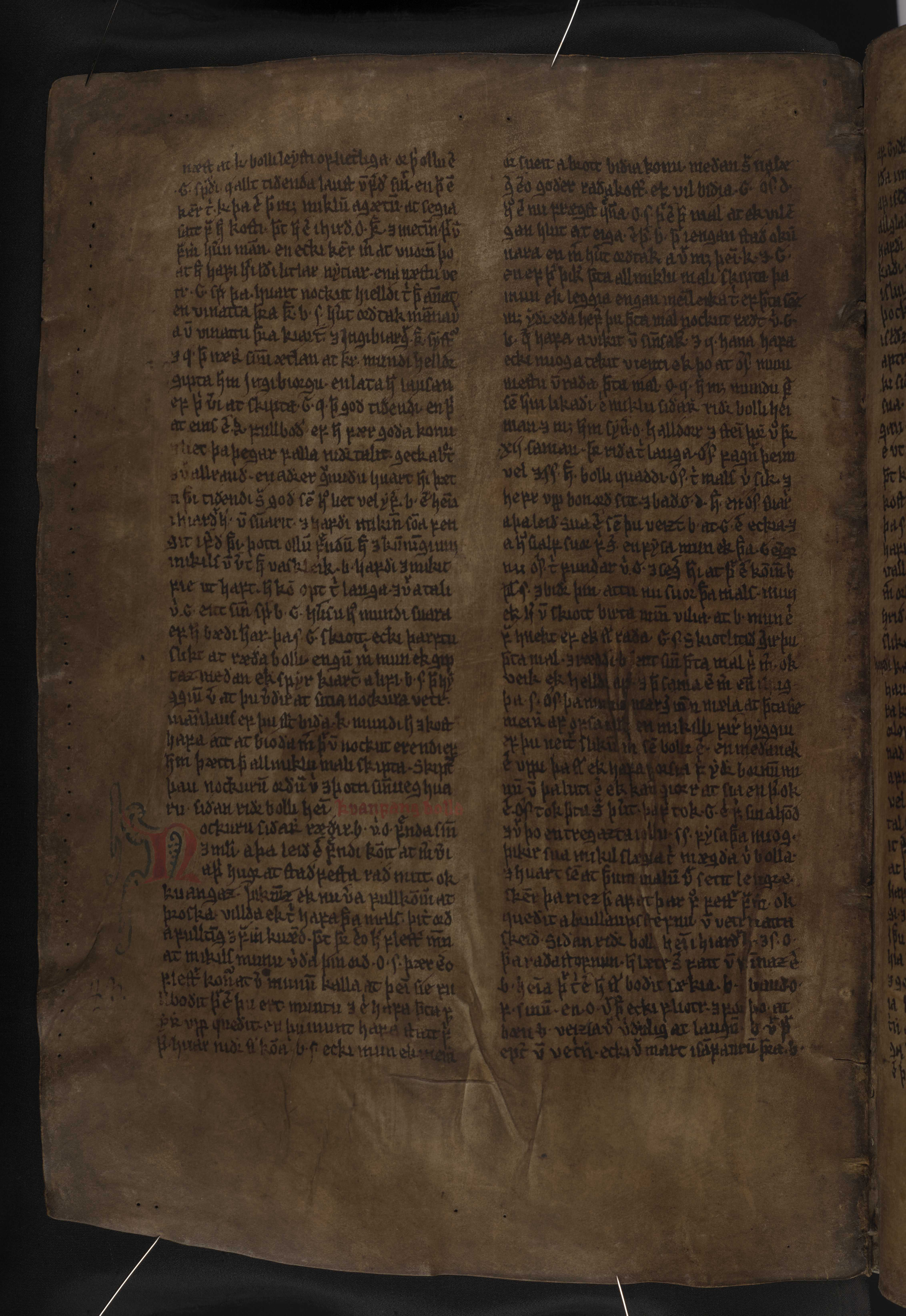 AM 132 fol - 177v