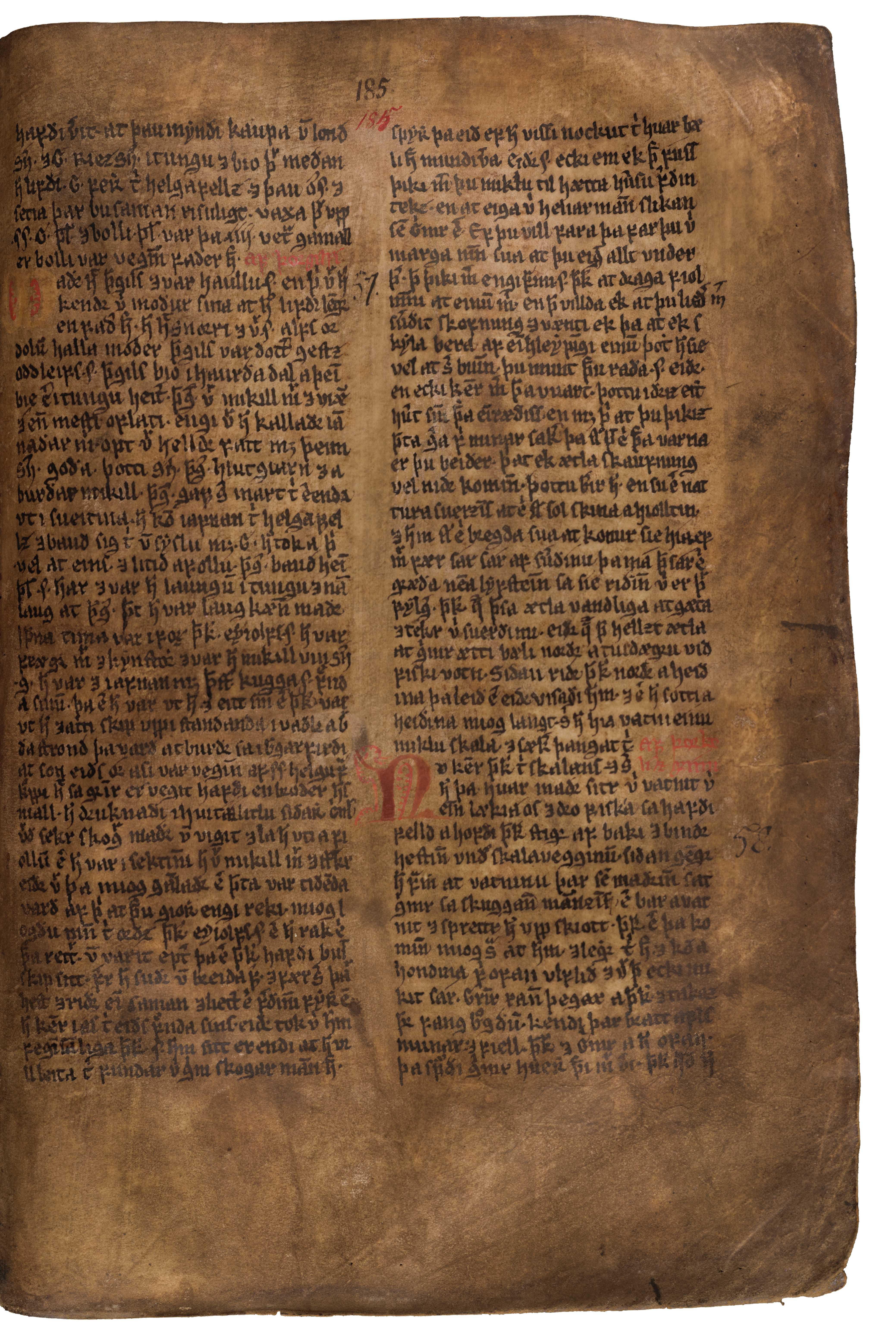 AM 132 fol - 185r