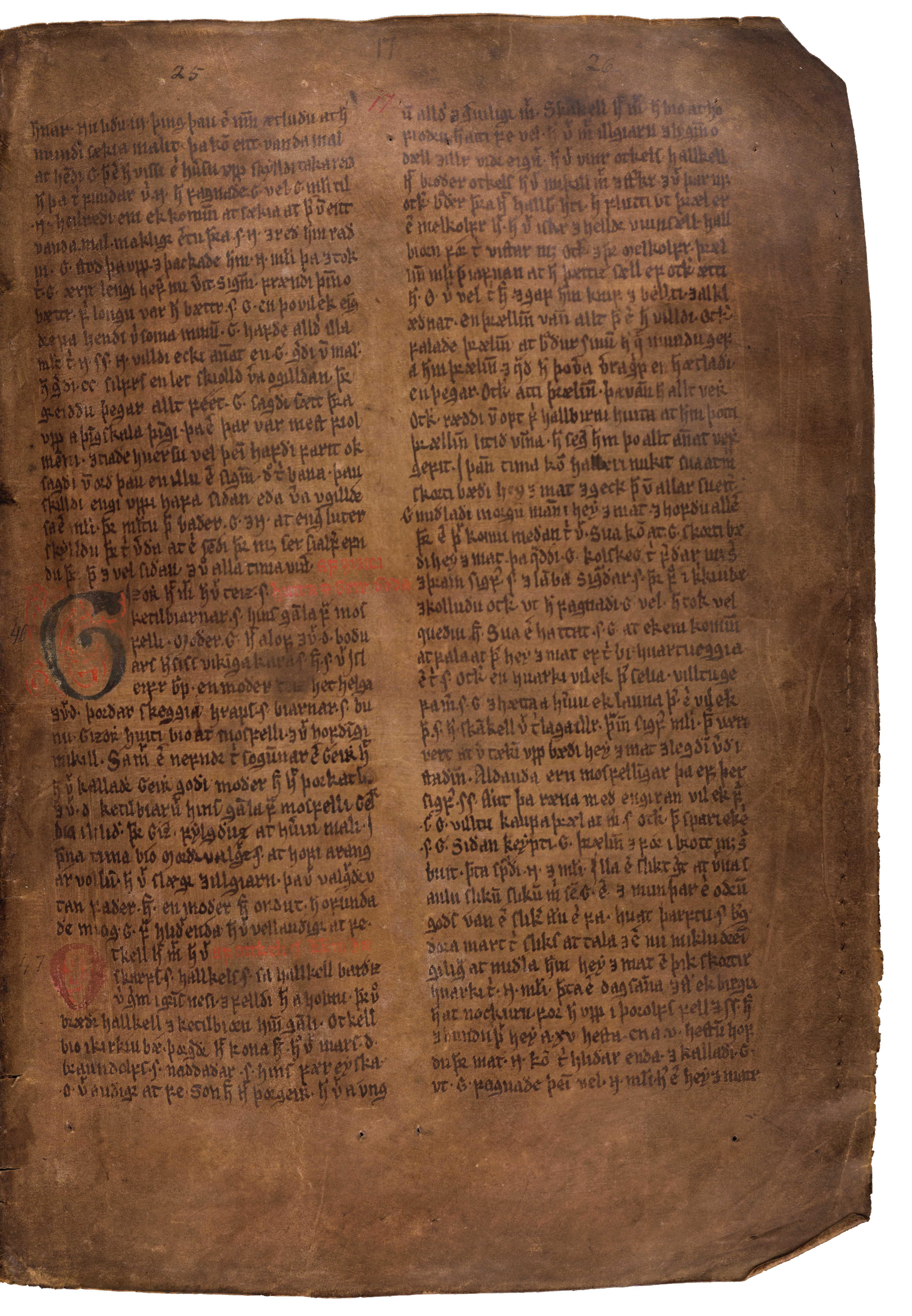 AM 132 fol - 17r