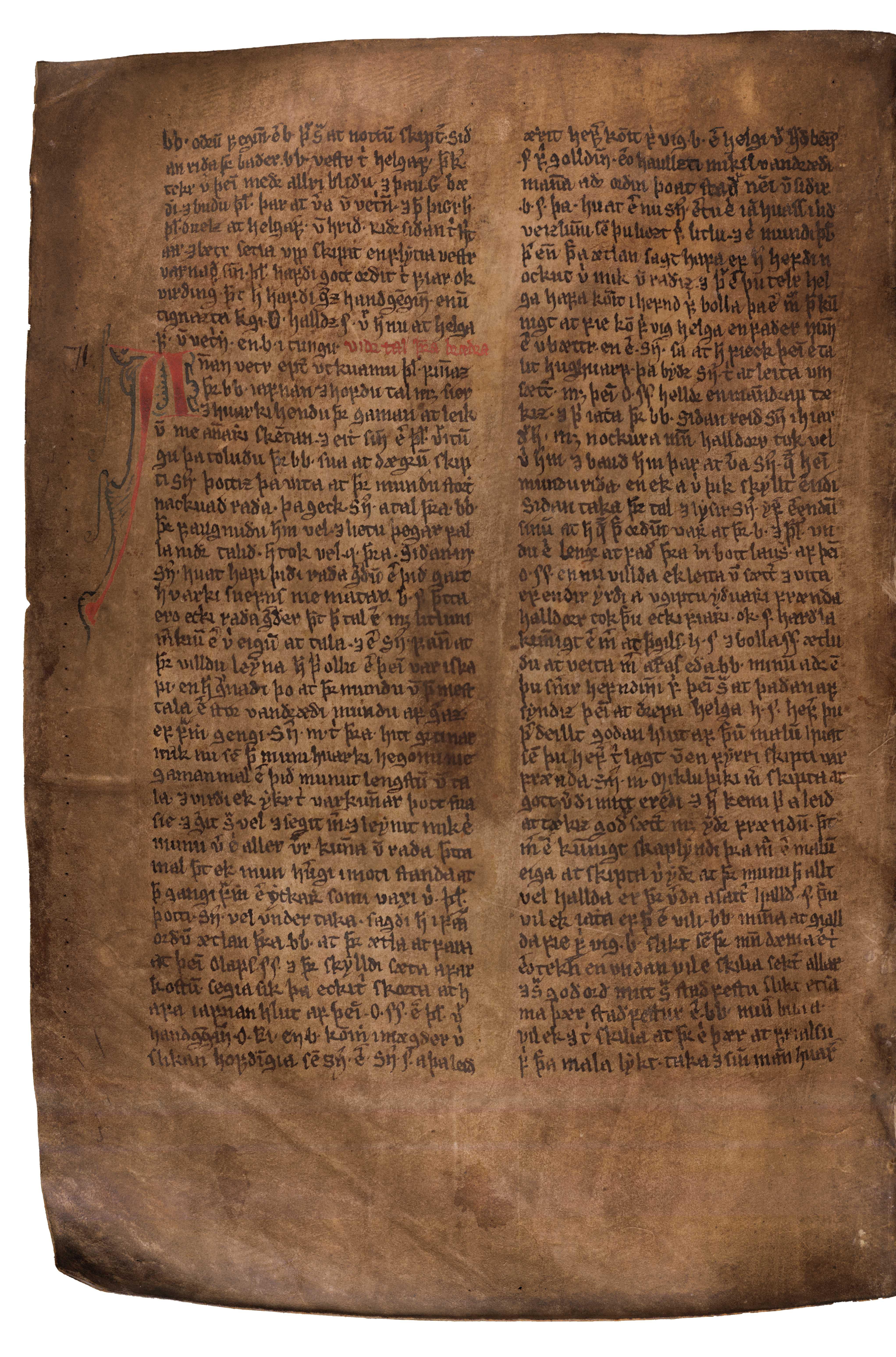 AM 132 fol - 191v