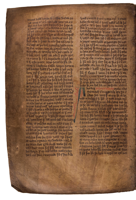 AM 132 fol - 193v
