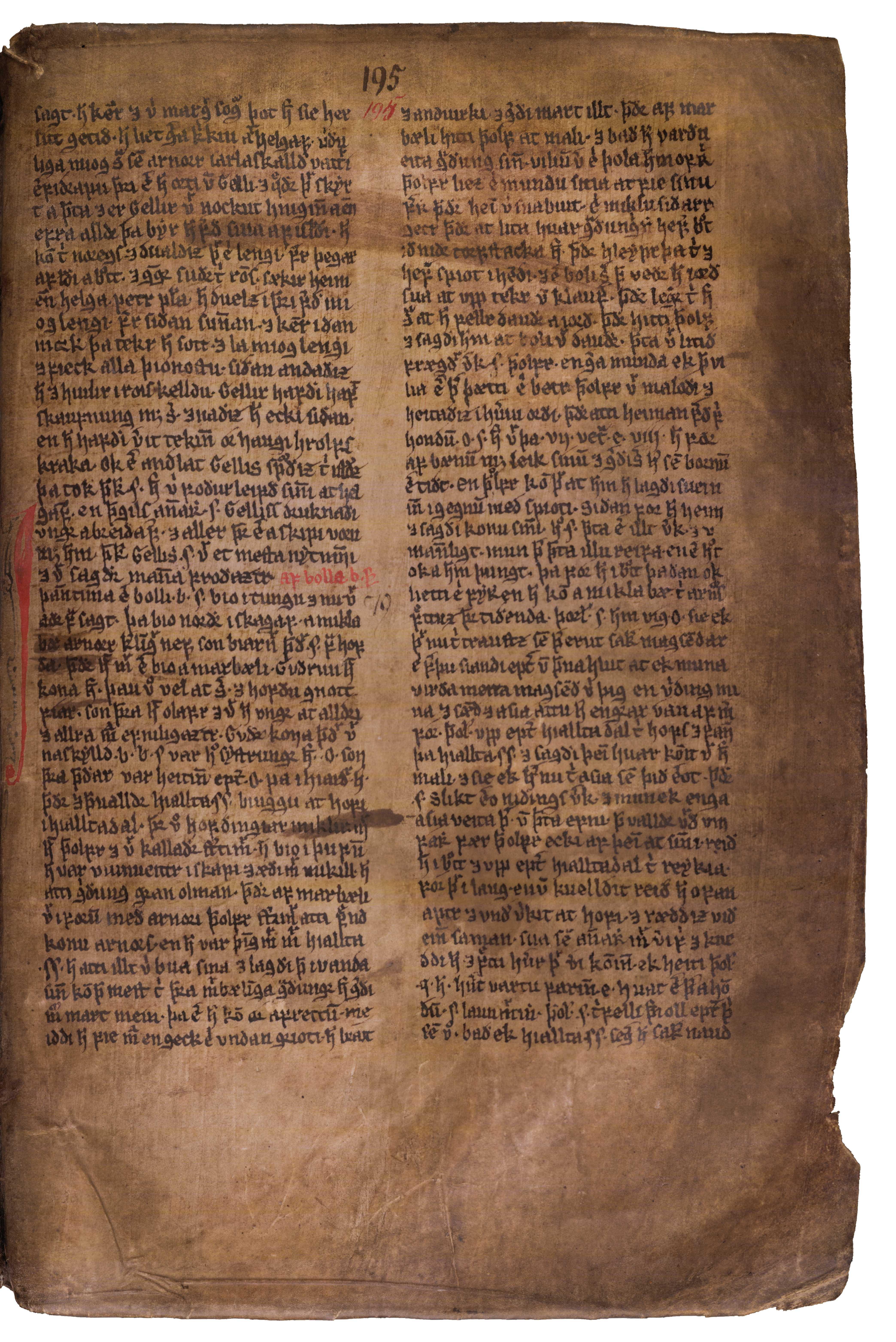 AM 132 fol - 195r