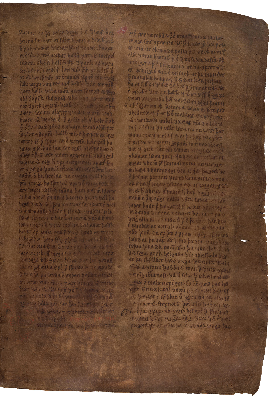 AM 132 fol - 24r