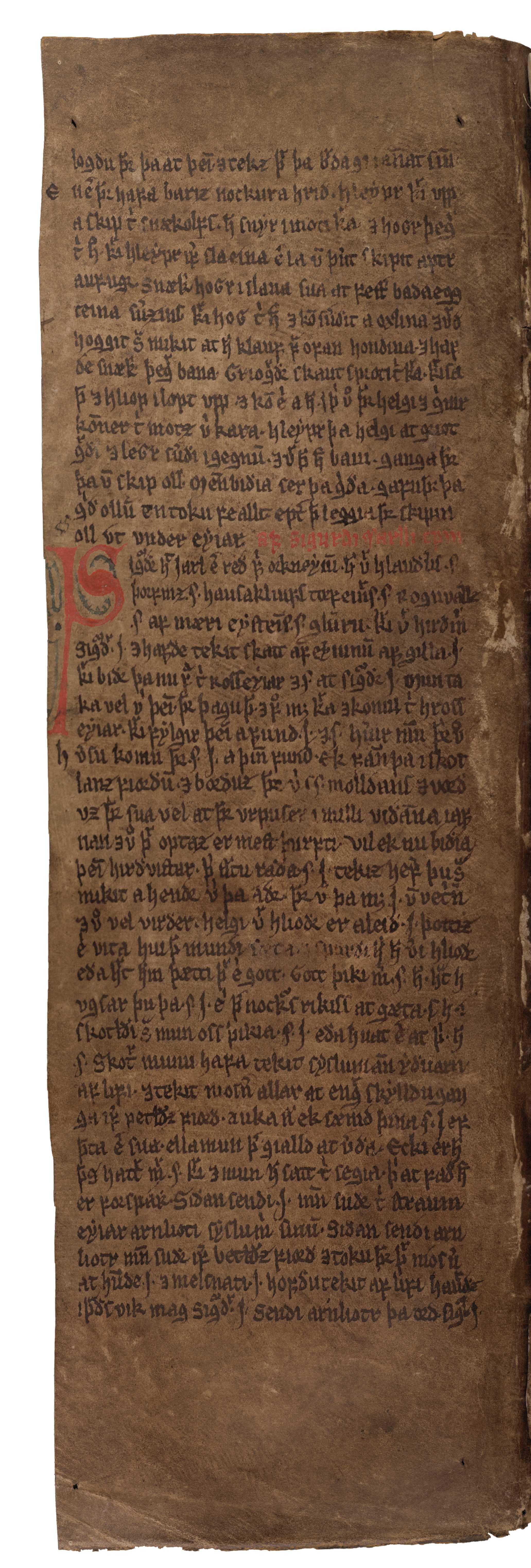 AM 132 fol - 29v