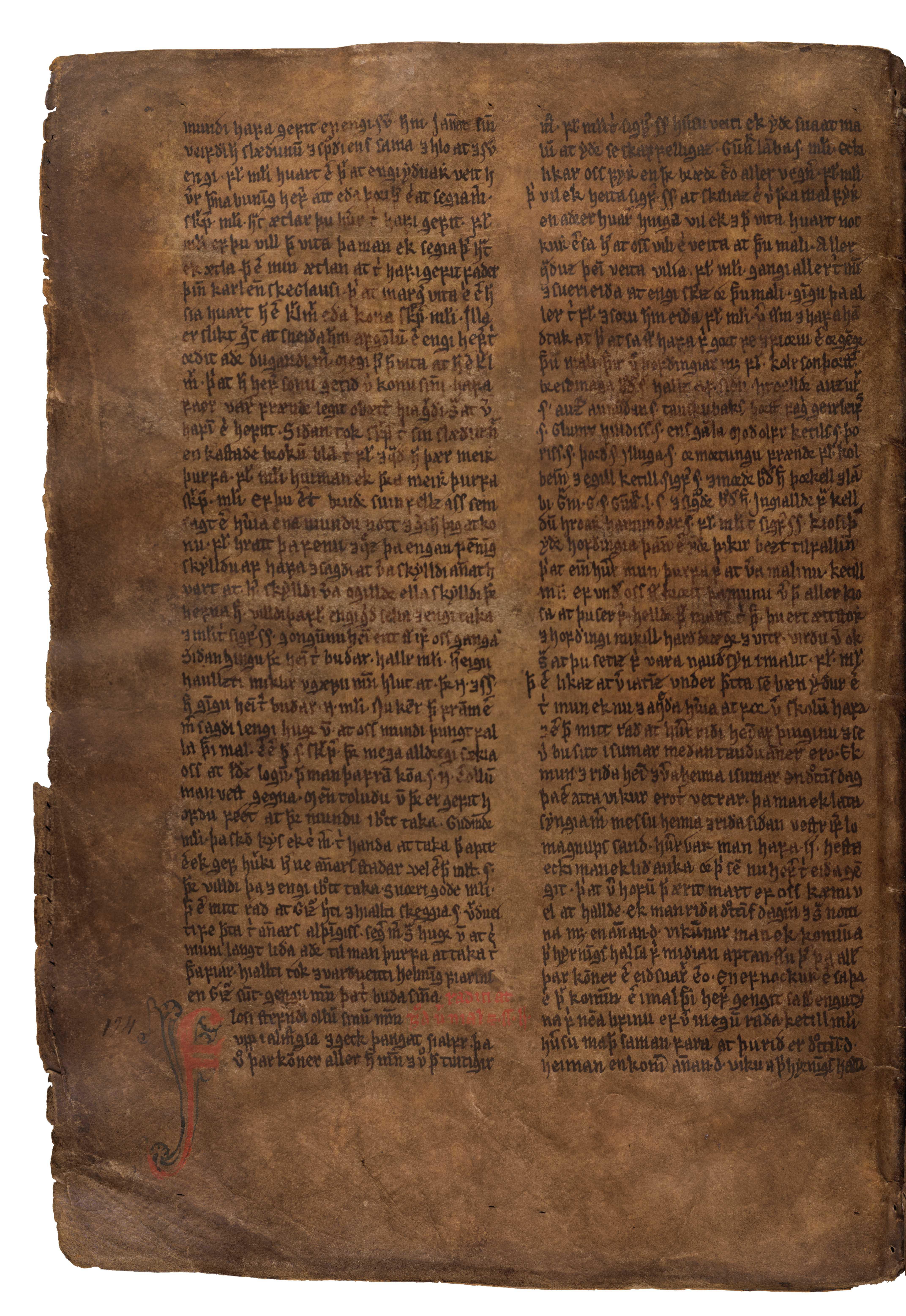 AM 132 fol - 43v