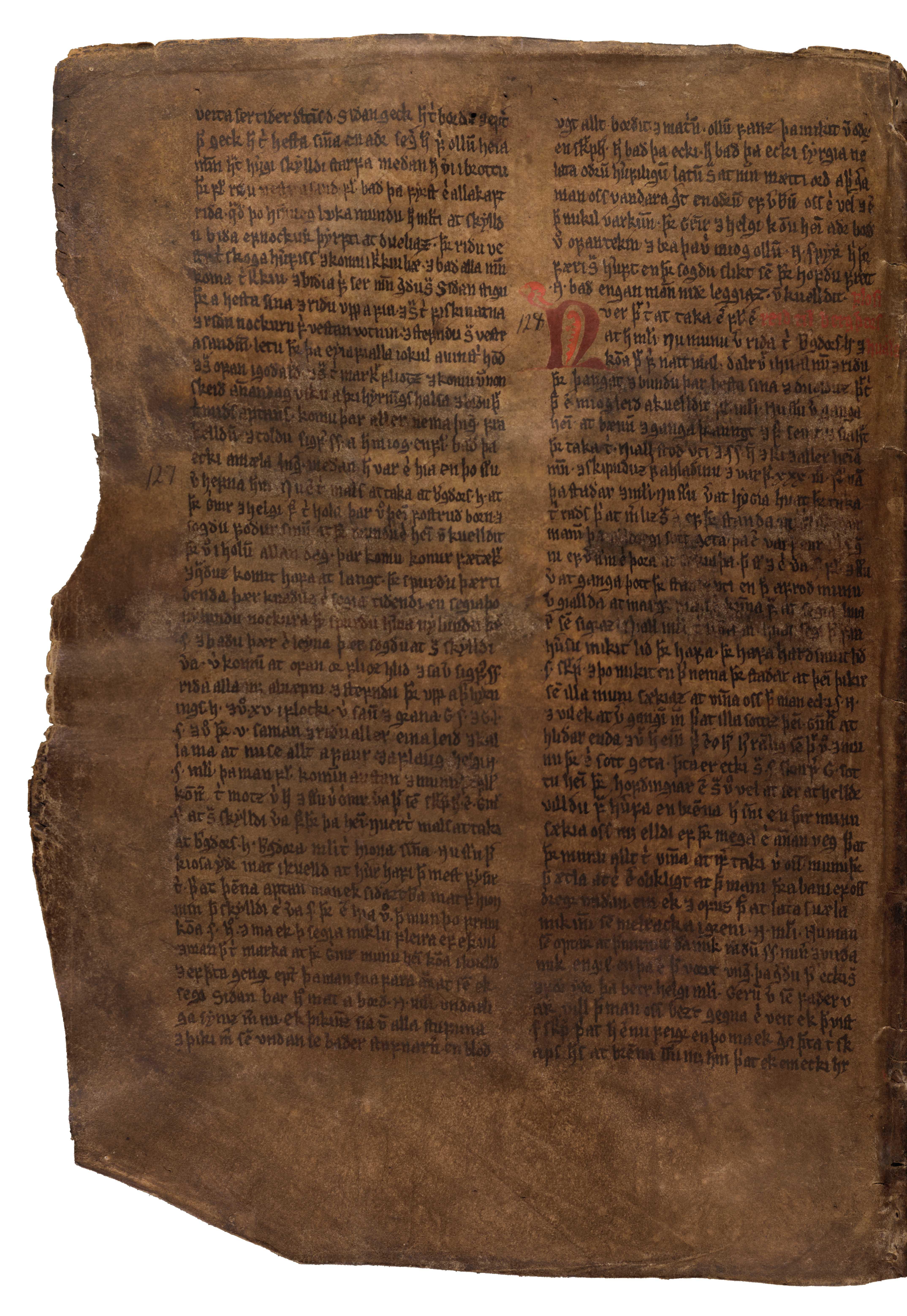 AM 132 fol - 44v