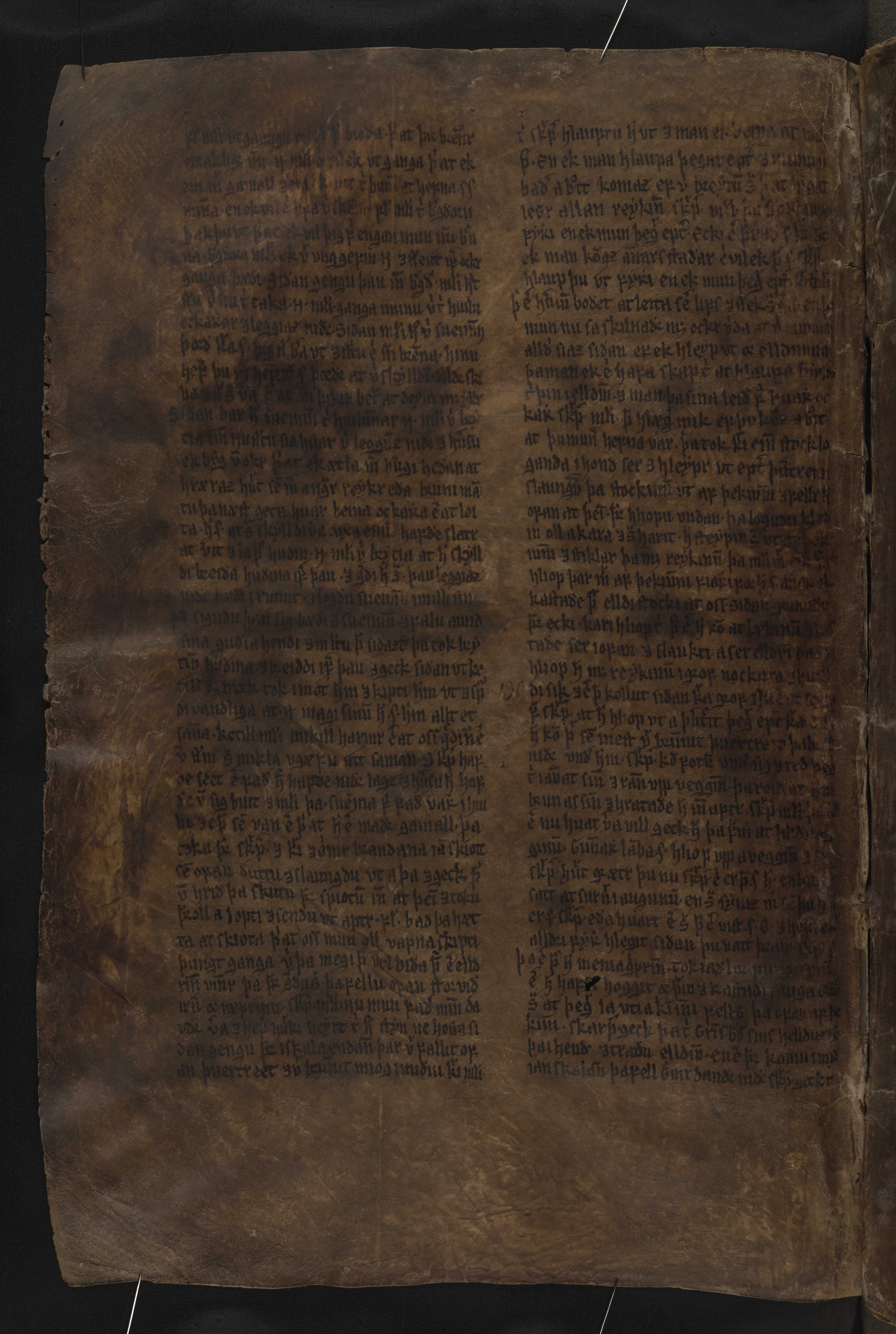 AM 132 fol - 45v