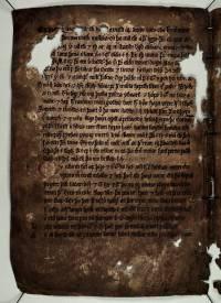 AM 133 fol, 21v (d633dpi)