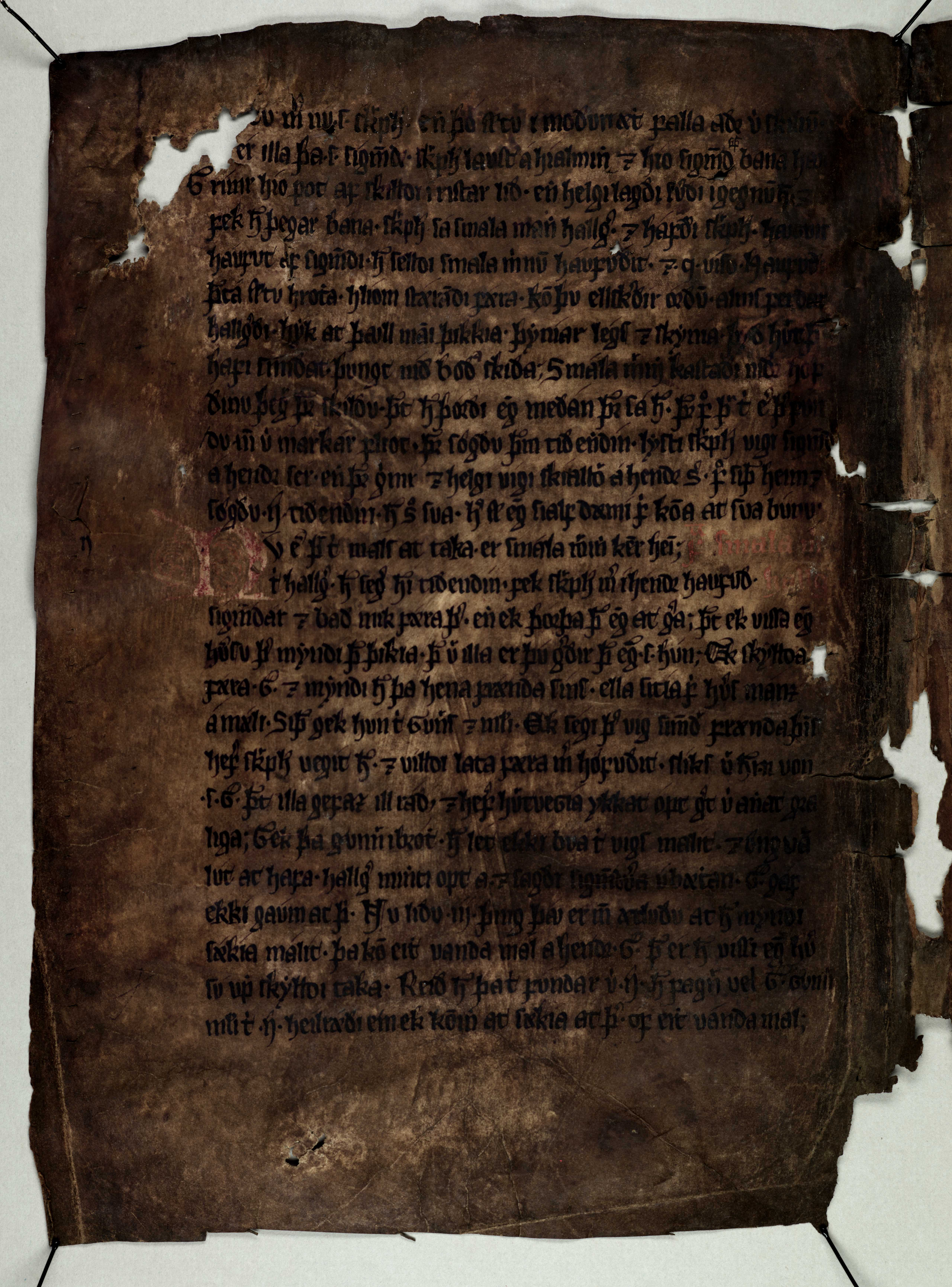 AM 133 fol - 23v