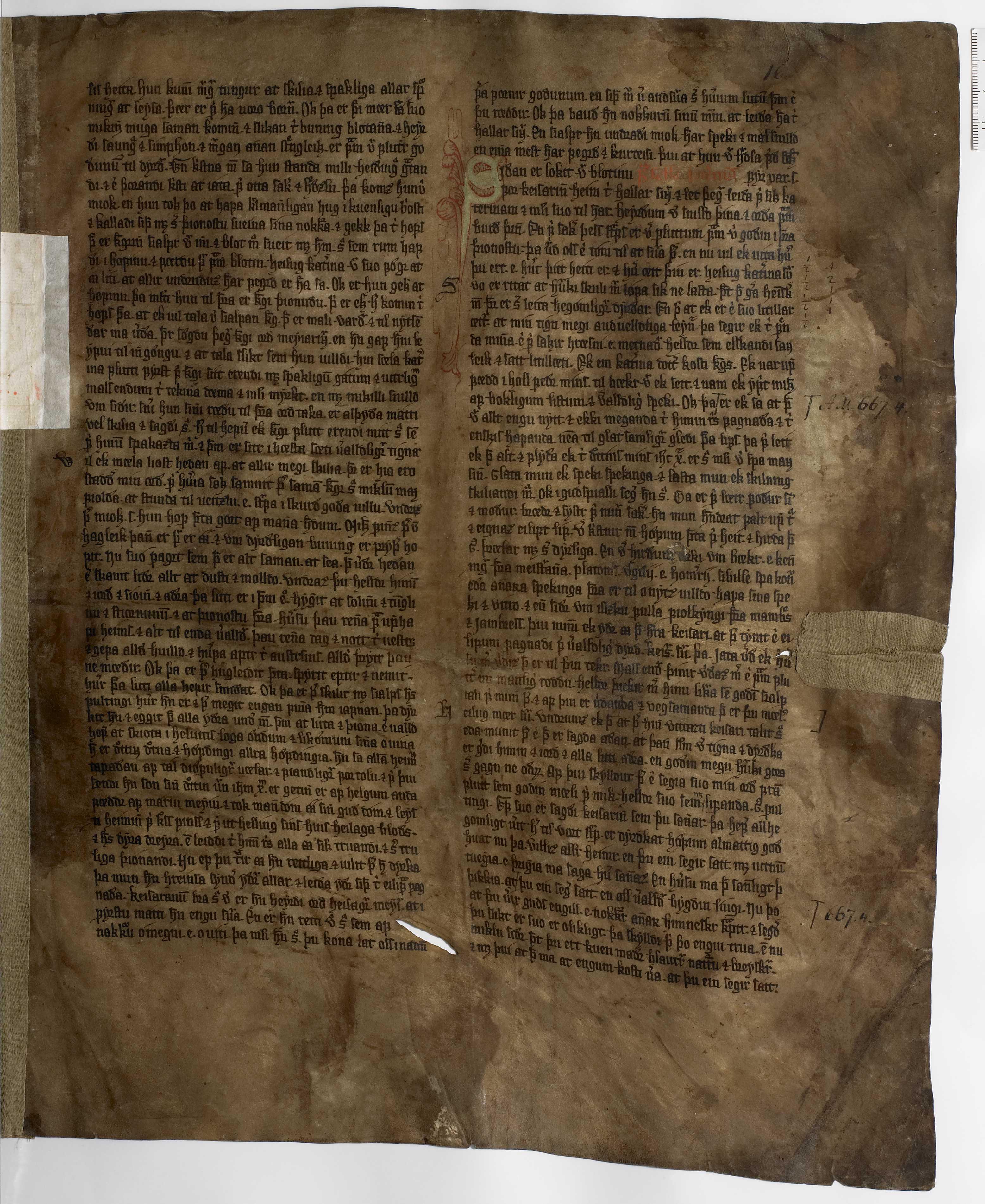 AM 233 a fol - 16r