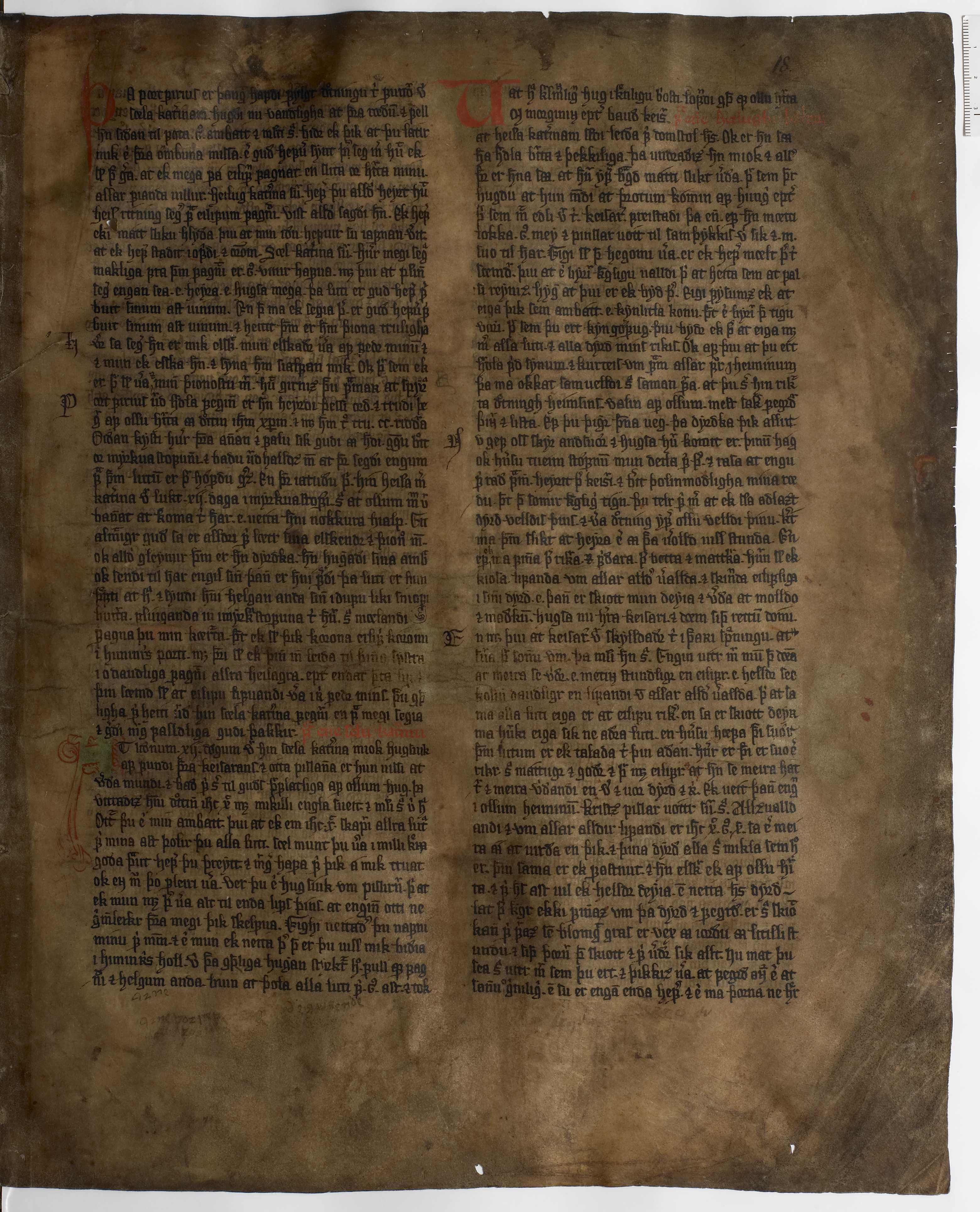 AM 233 a fol - 18r