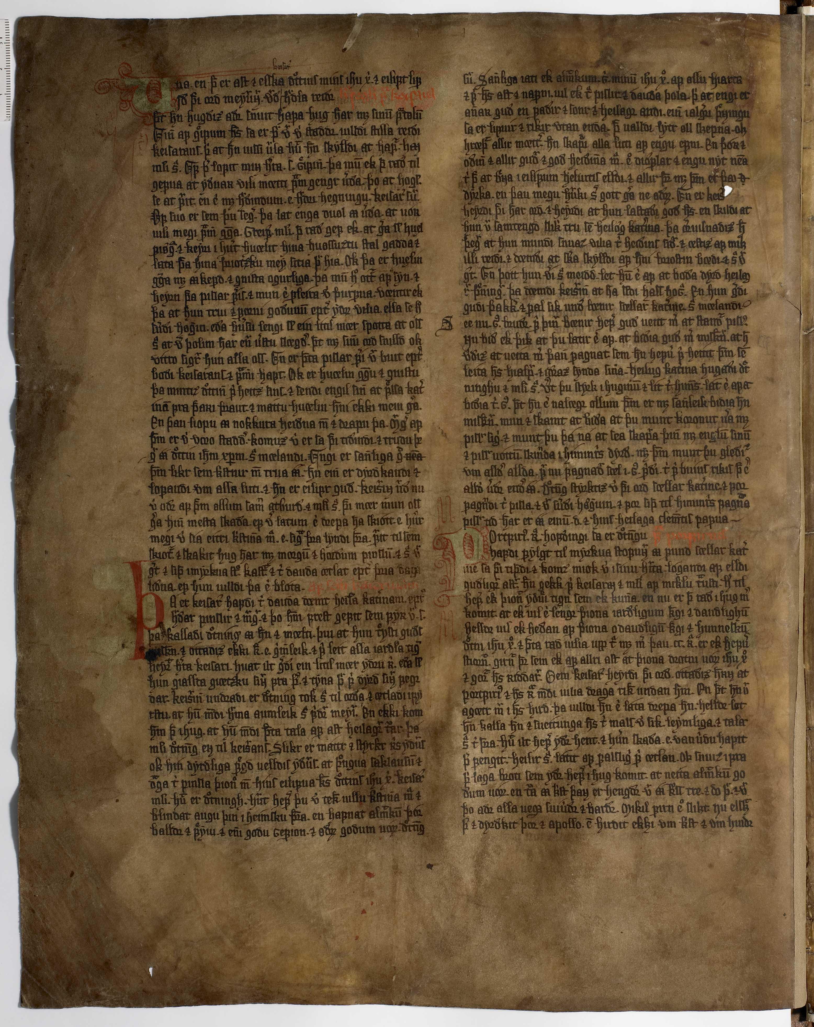 AM 233 a fol - 18v