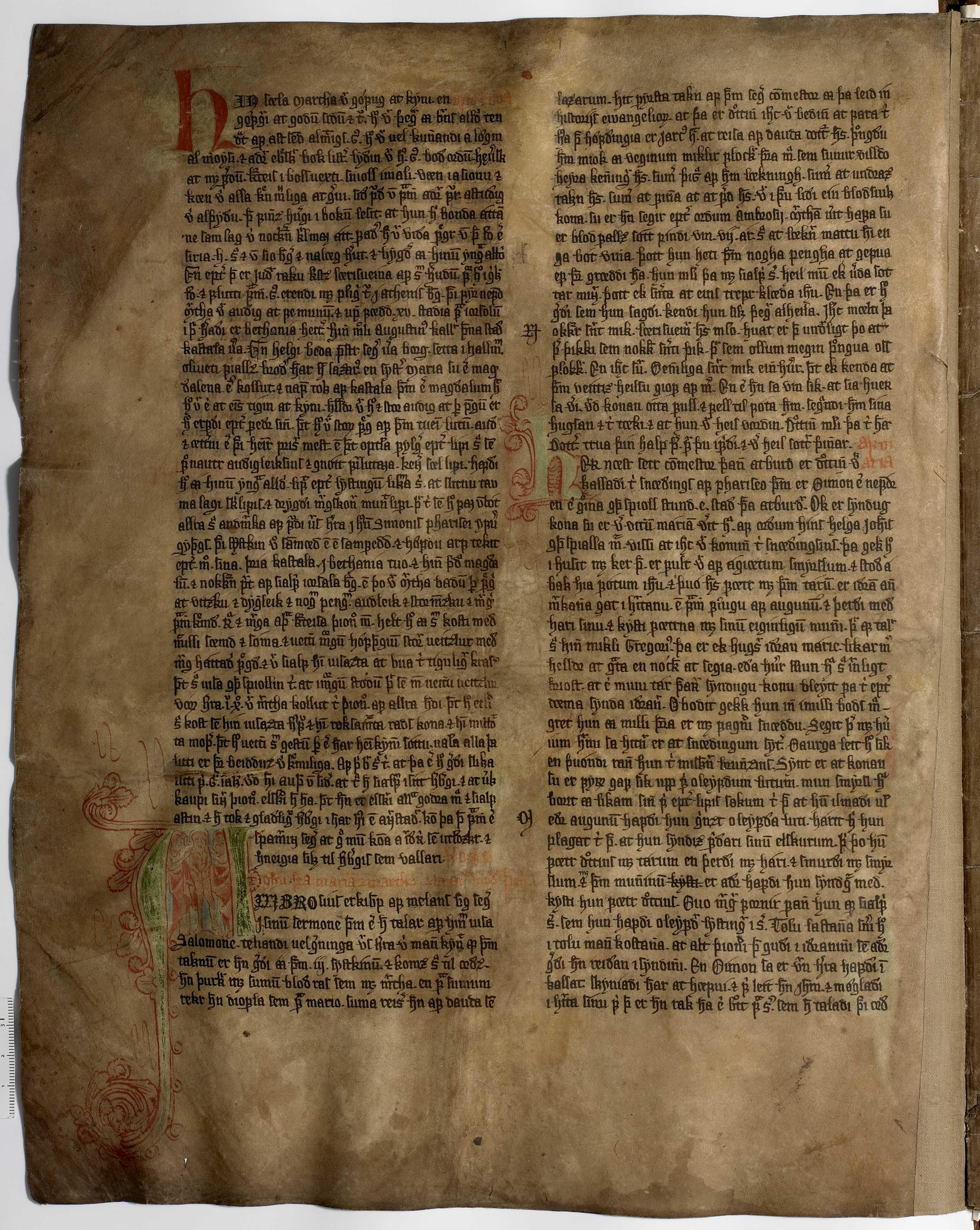 AM 233 a fol - 19v