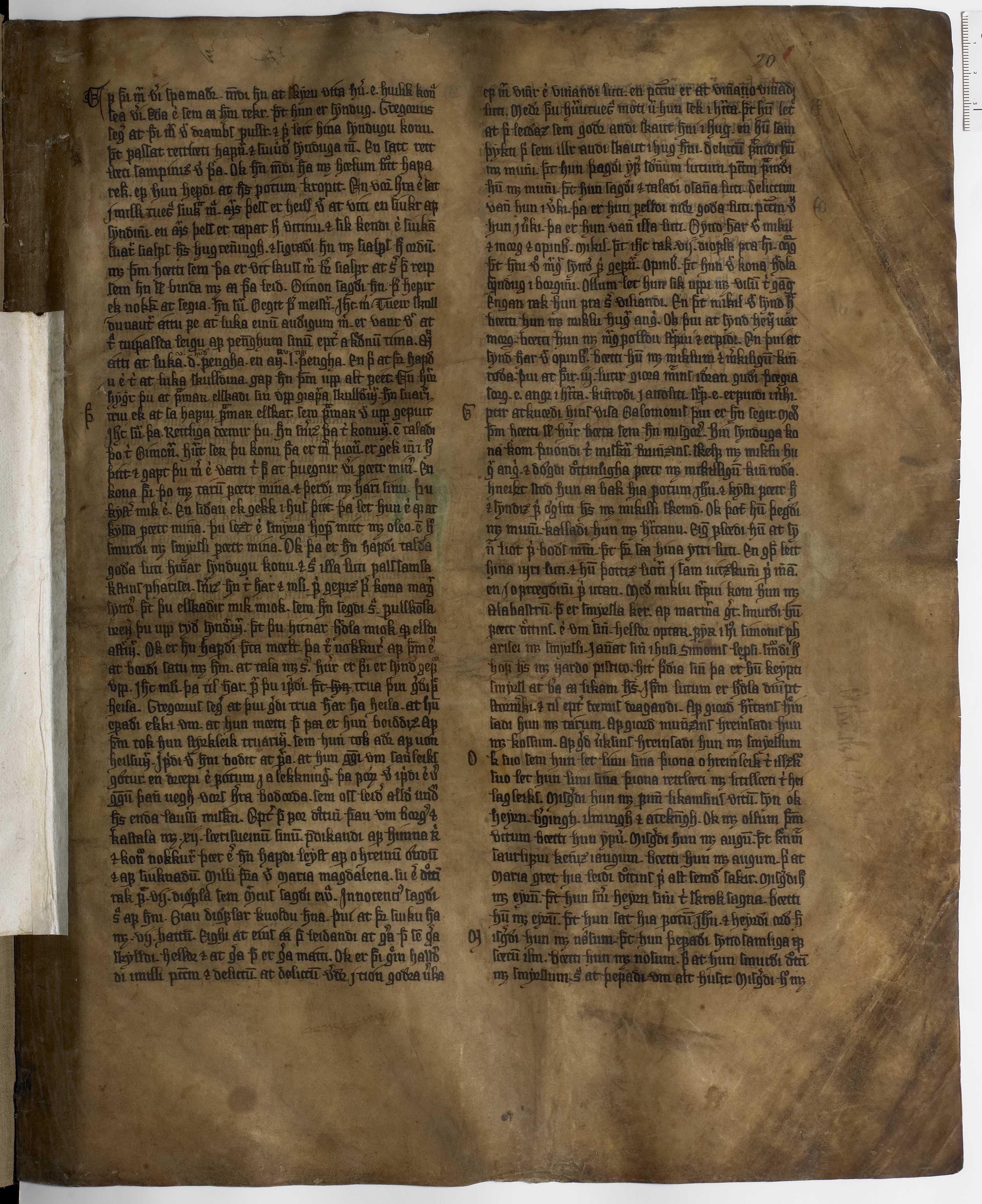 AM 233 a fol - 20r