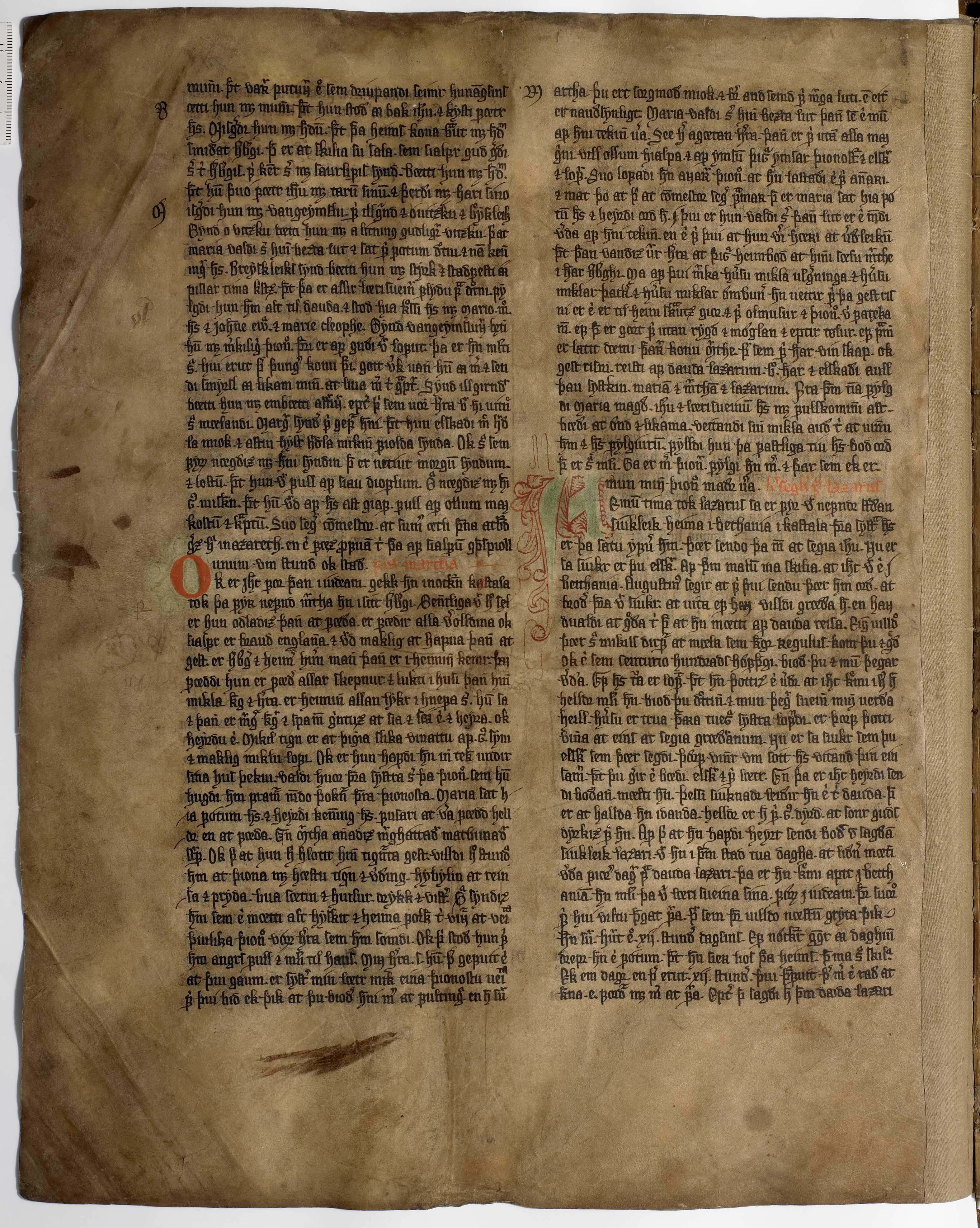 AM 233 a fol - 20v